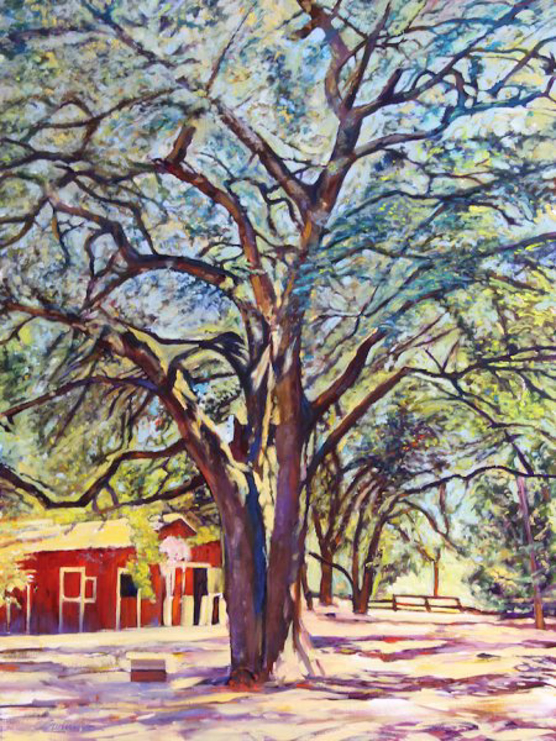 Tom Swimm: Sonoma Oak by Tom Swimm