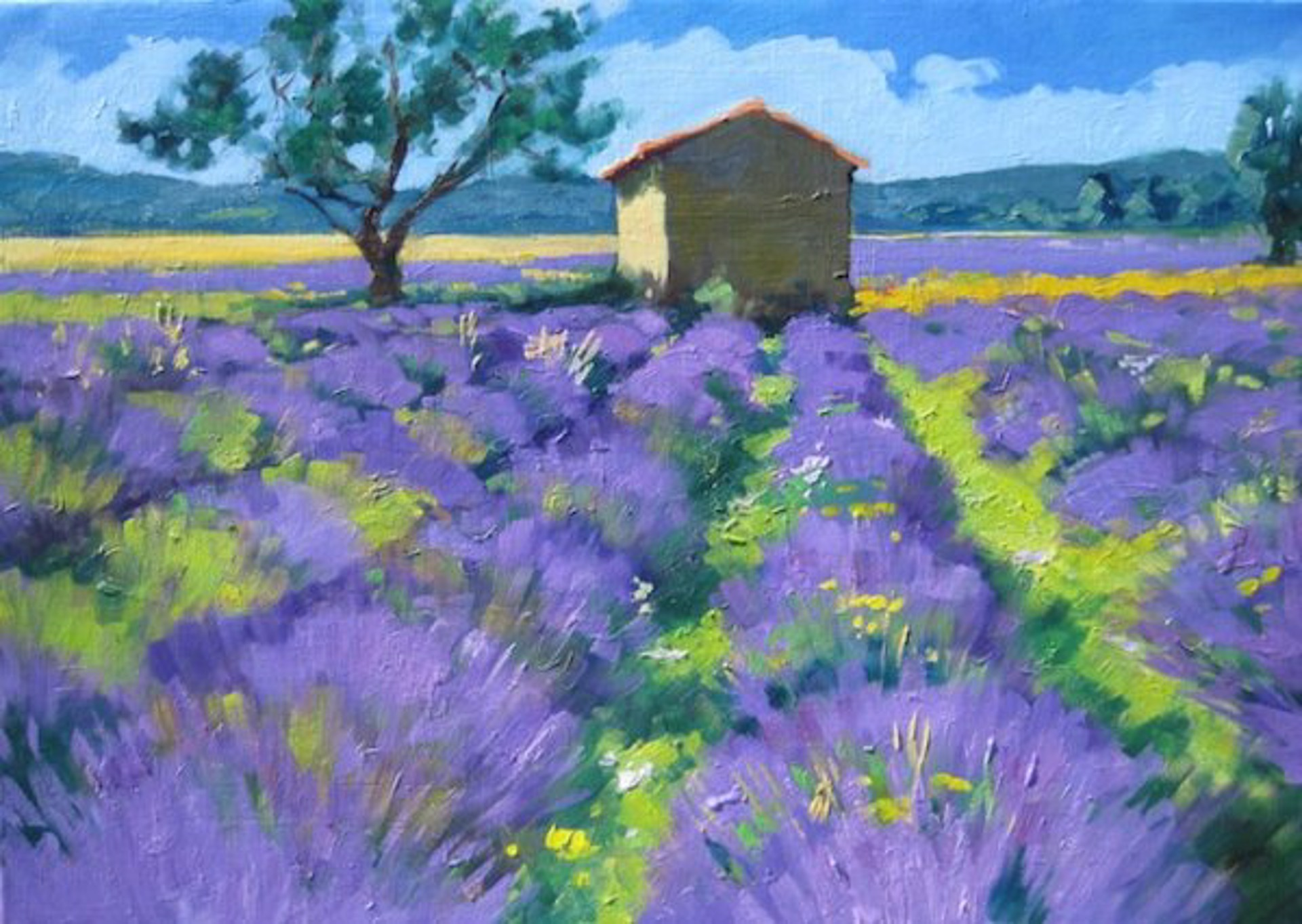 Lone Tree In The Lavender by Maria Bertrán