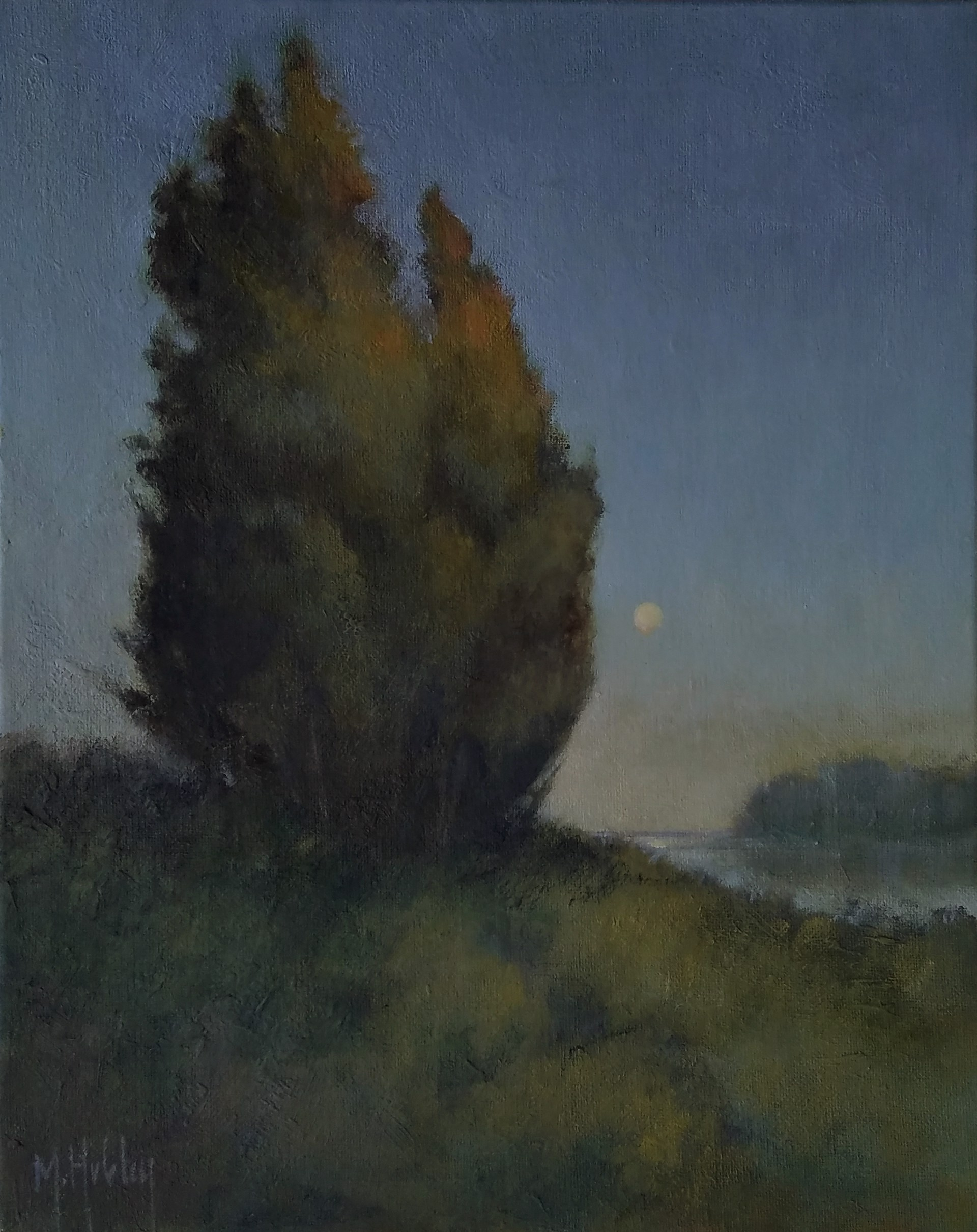 Still Moon by Mary Hubley