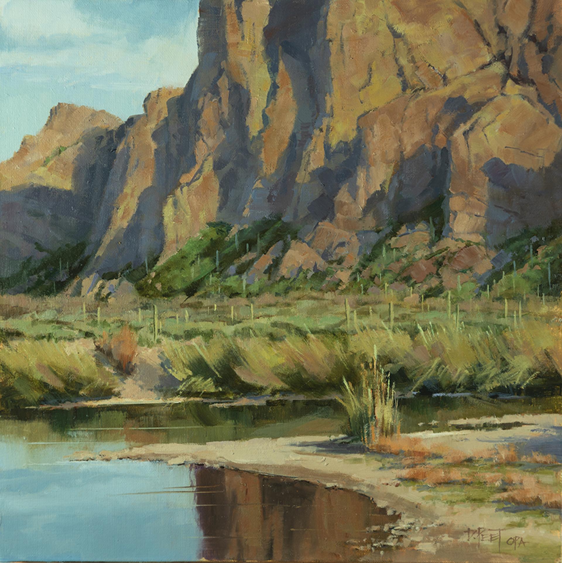 Desert Cliff Reflections by Darcie Peet