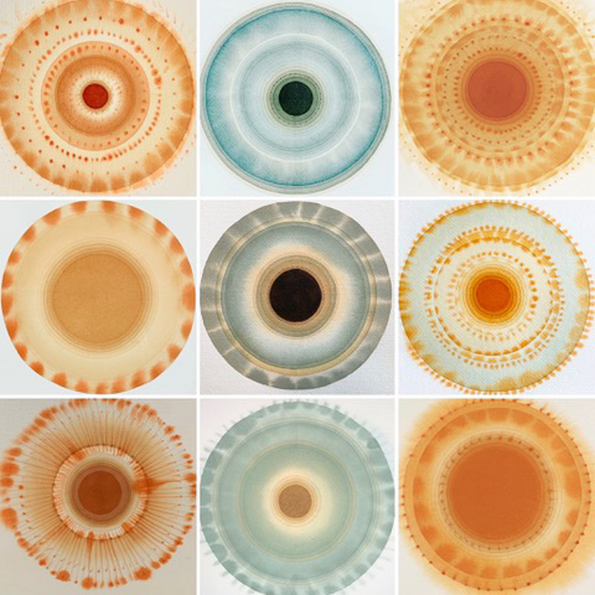 Mandalas for Kristin by Jan Heaton