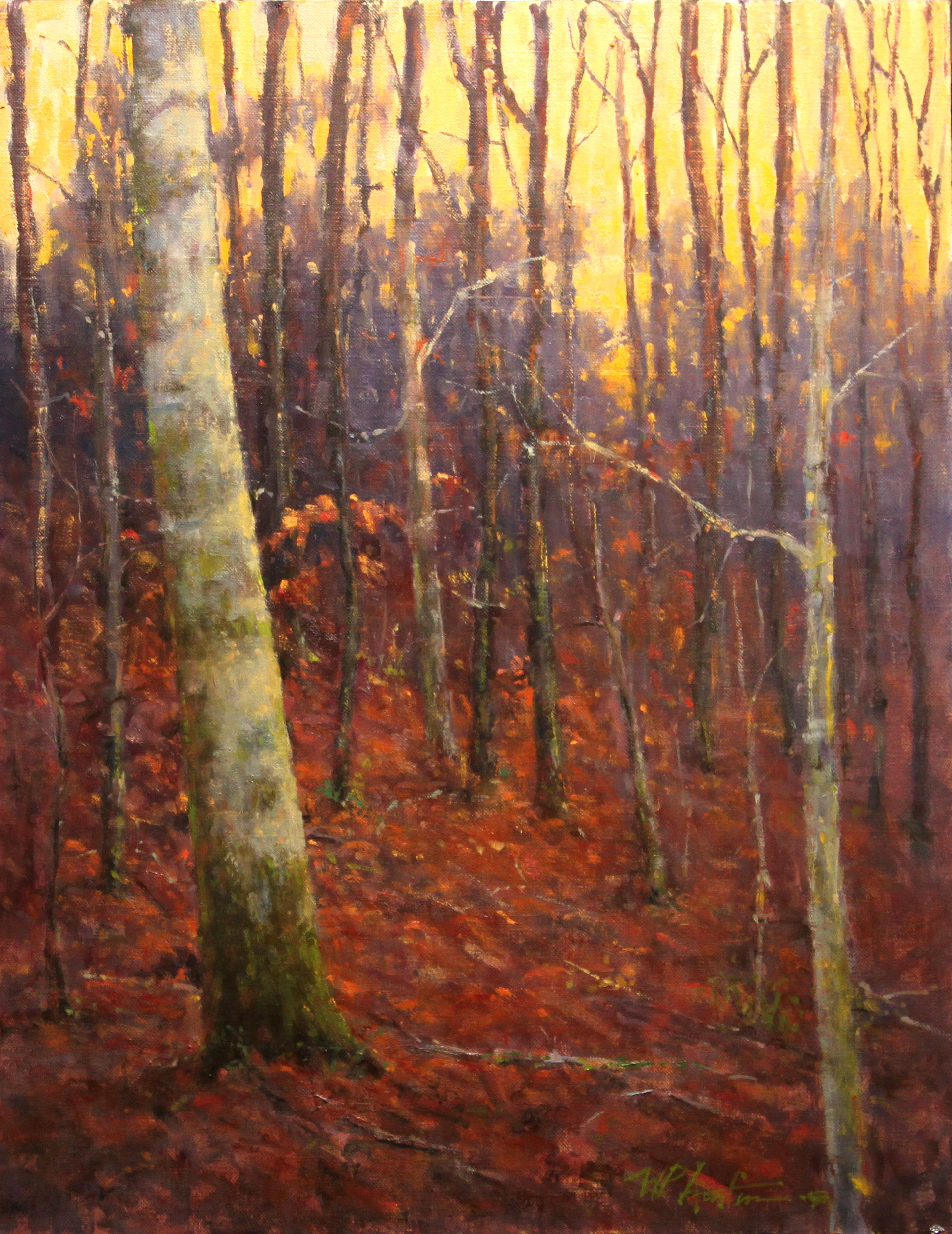 Evening Hardwoods by Perry Austin