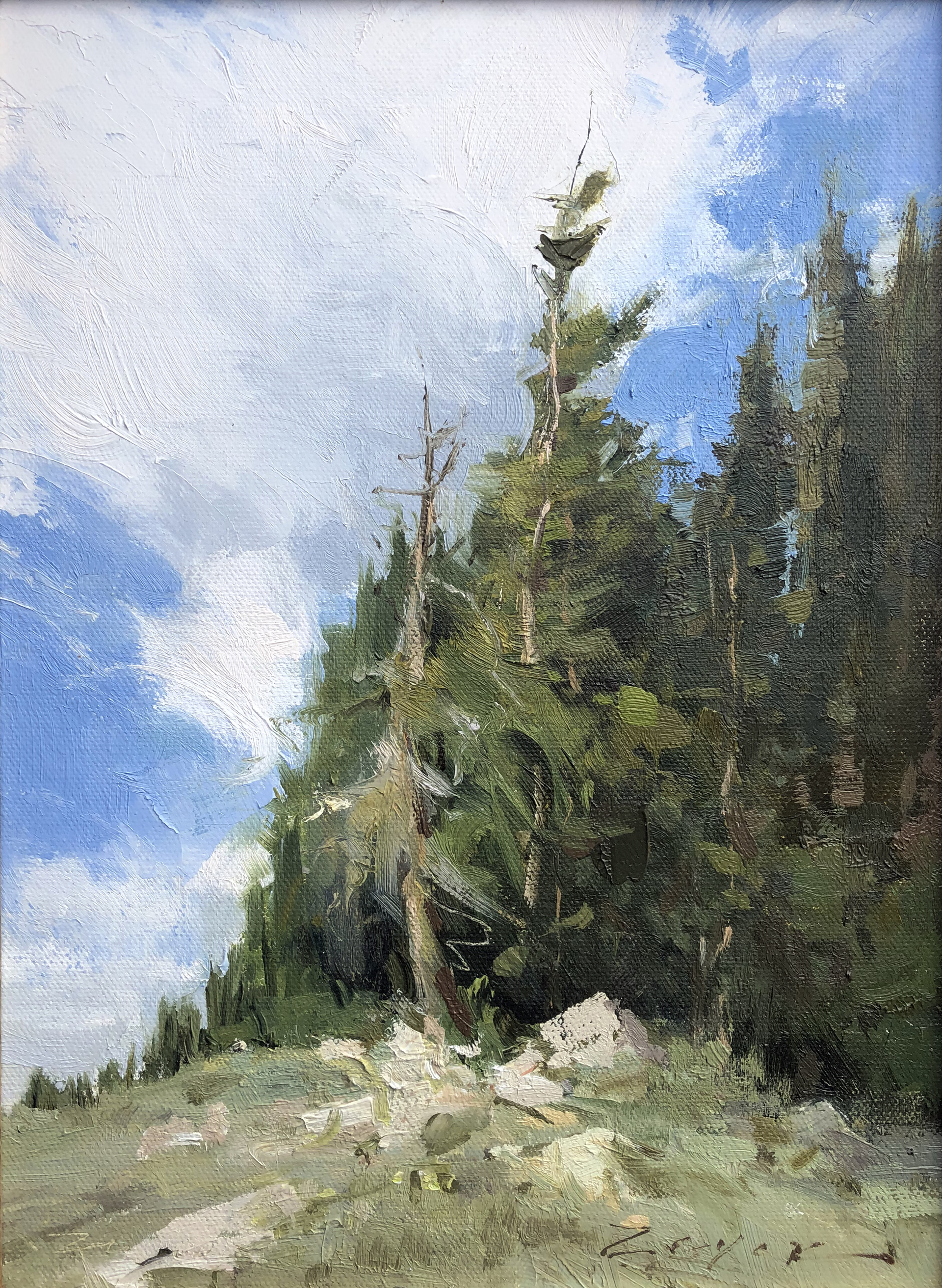 High Mountain Pines by Allie Zeyer