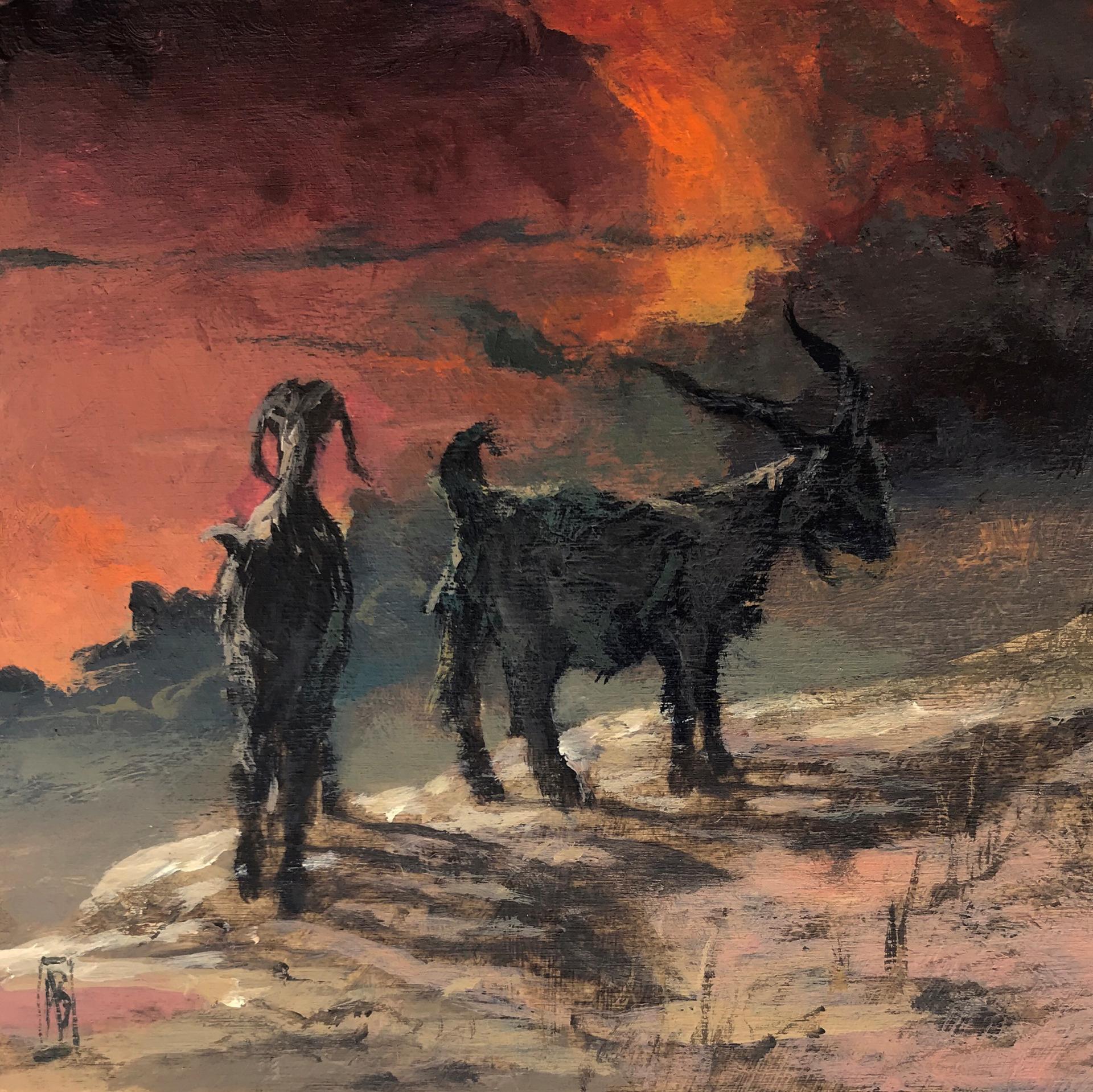 Koza by Adam Burke