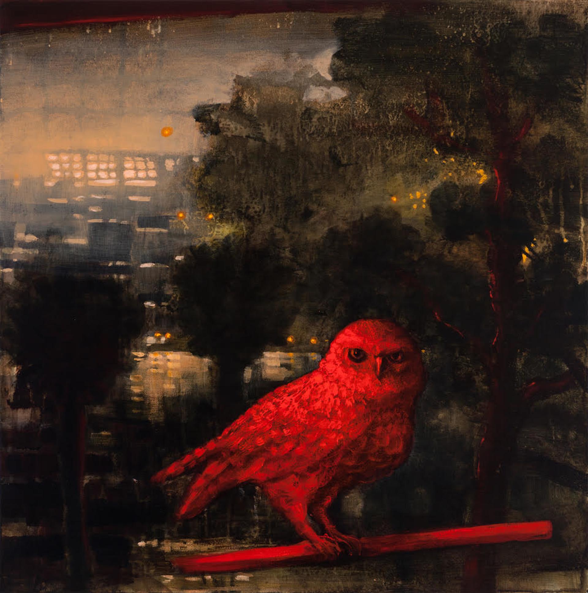 The Hidden Bird by Kevin Sloan