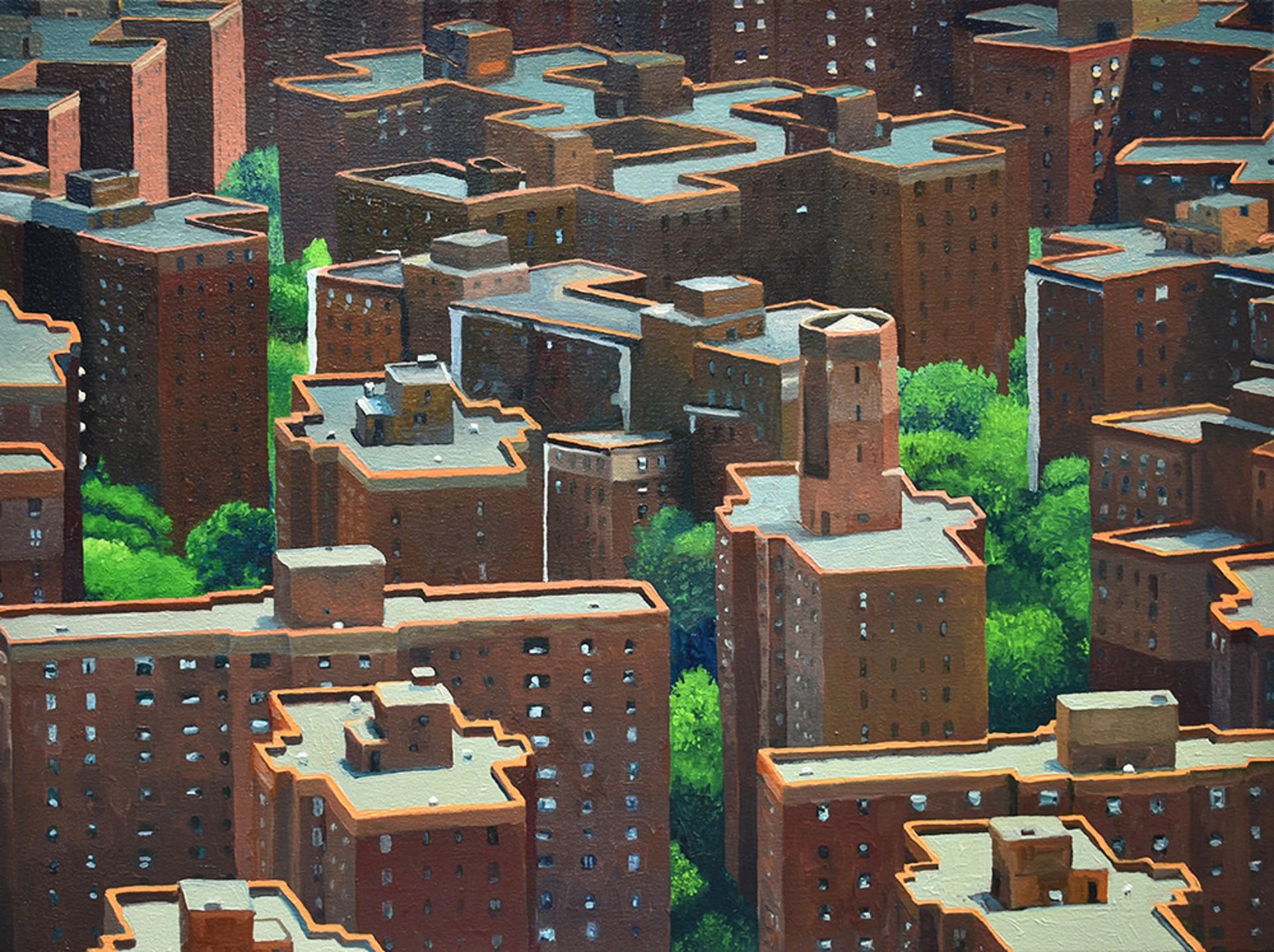 Habitat by David Leonard