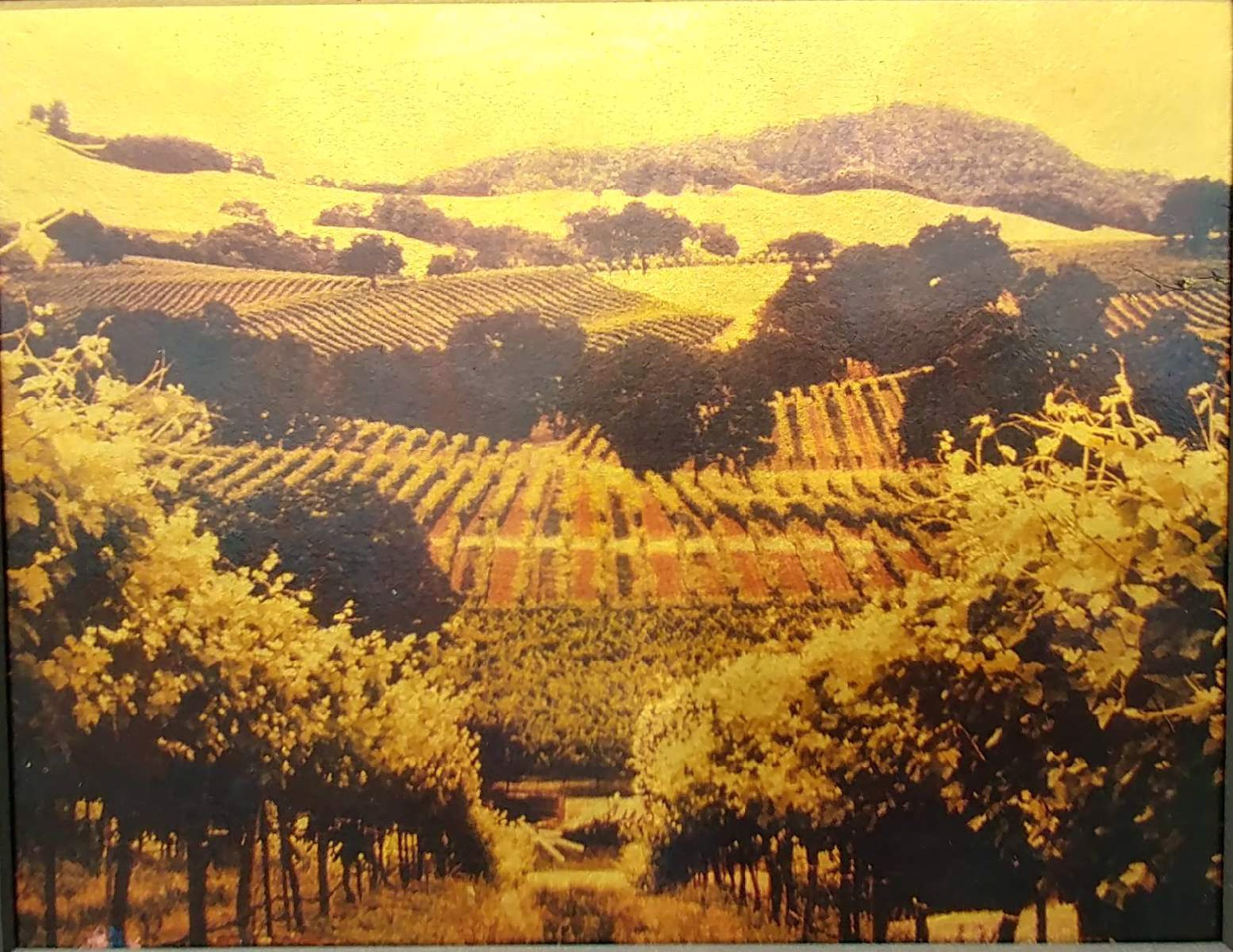 Russian River Valley, Summer Study #2 by Patty Mulligan