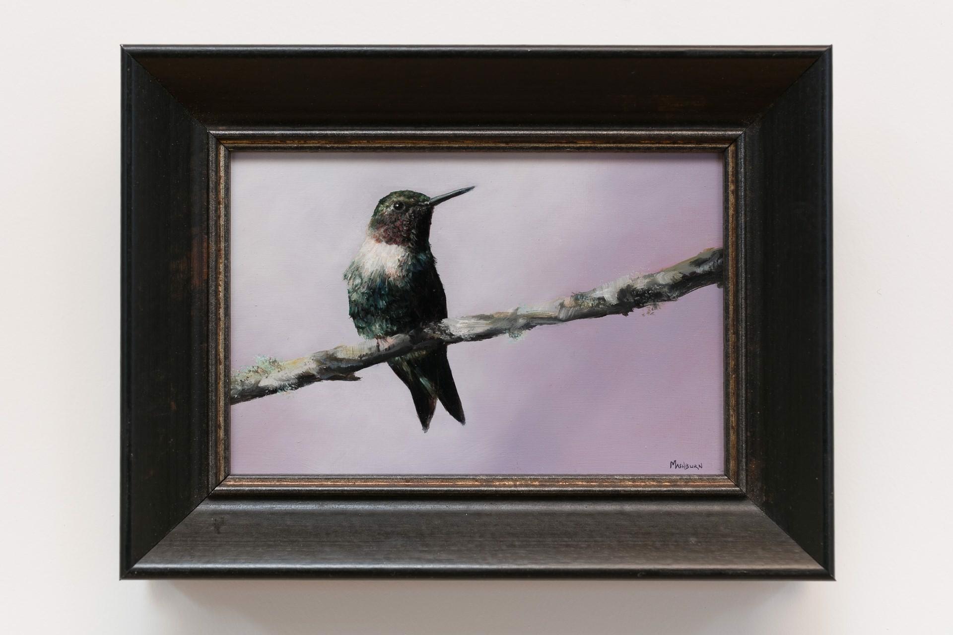 Ruby Throated Hummingbird #1 by Brian Mashburn