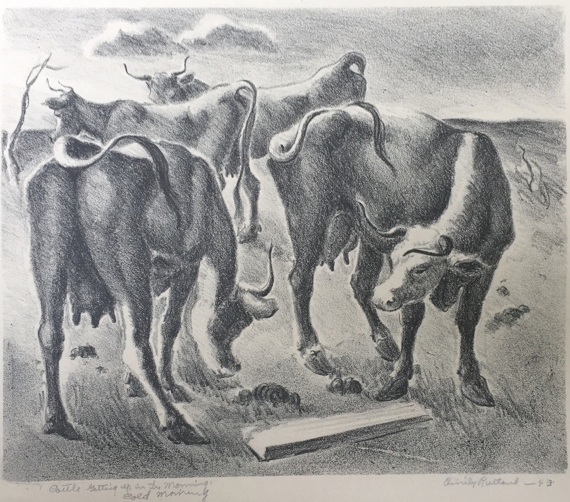 Cattle Getting Up, Cold Morning by Emily Rutland
