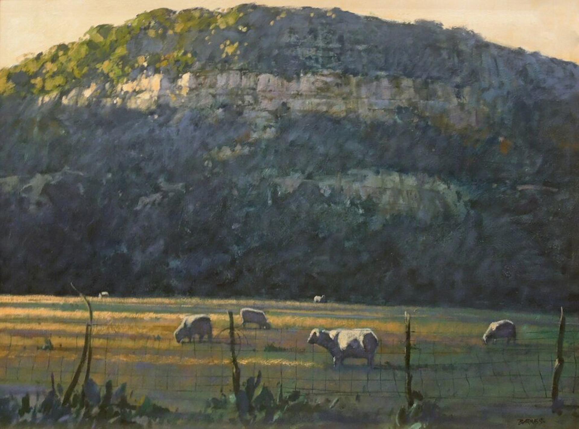 Kerr County by Al Barnes