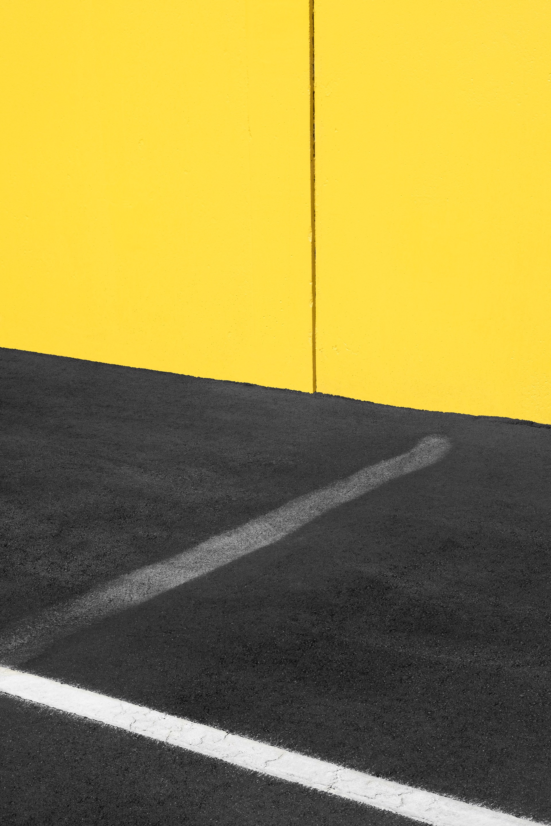 Yellow and Black with White by Jon Setter
