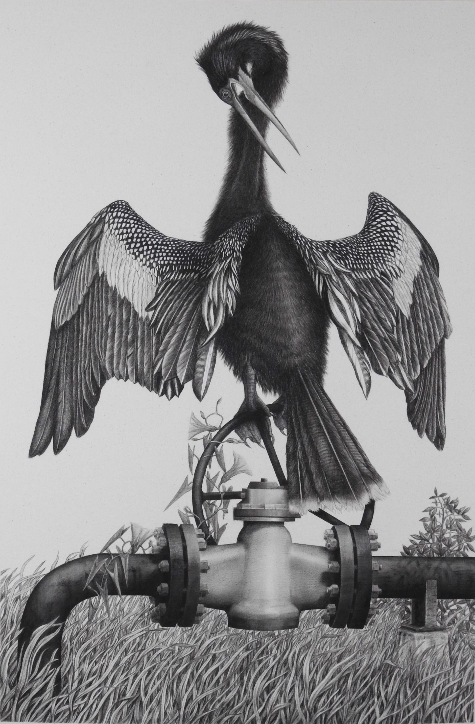 Snakebird by Margie Crisp