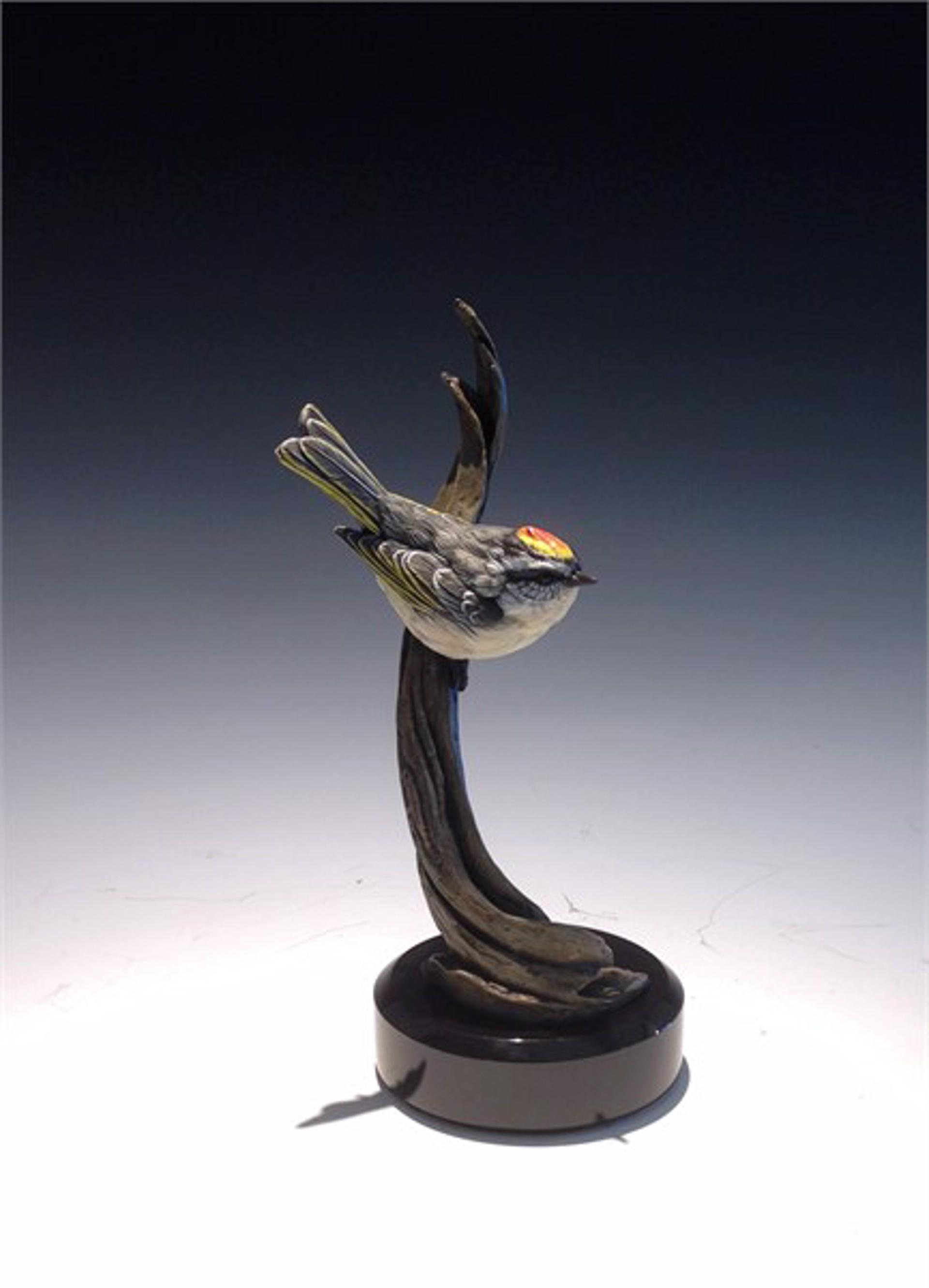 Golden Crowned Kinglet by Eugene Morelli