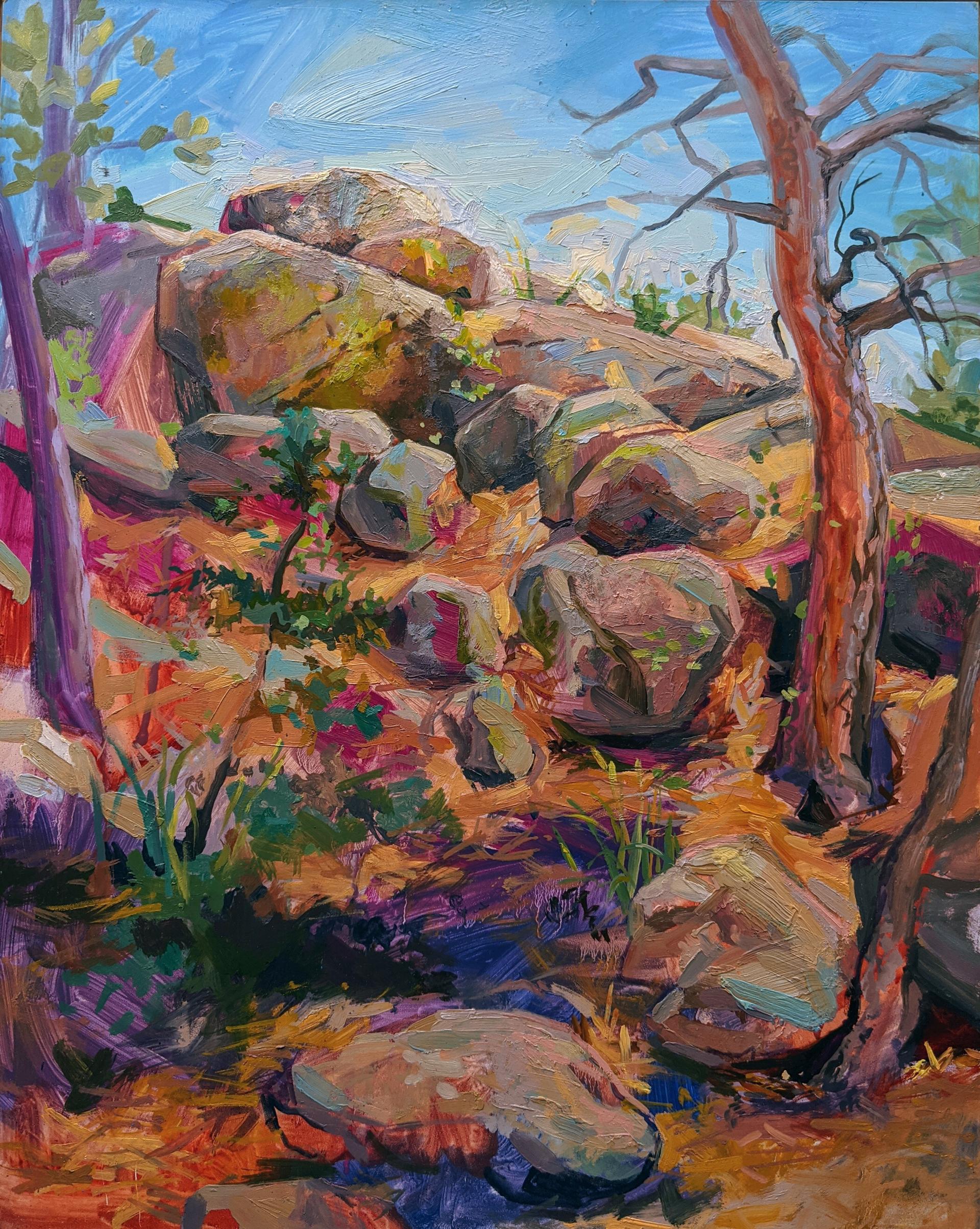 Rock Rivulus by Charis Carmichael Braun