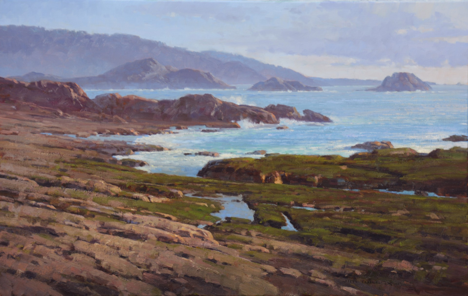 Low Tide at Point Lobos by Jim Wilcox