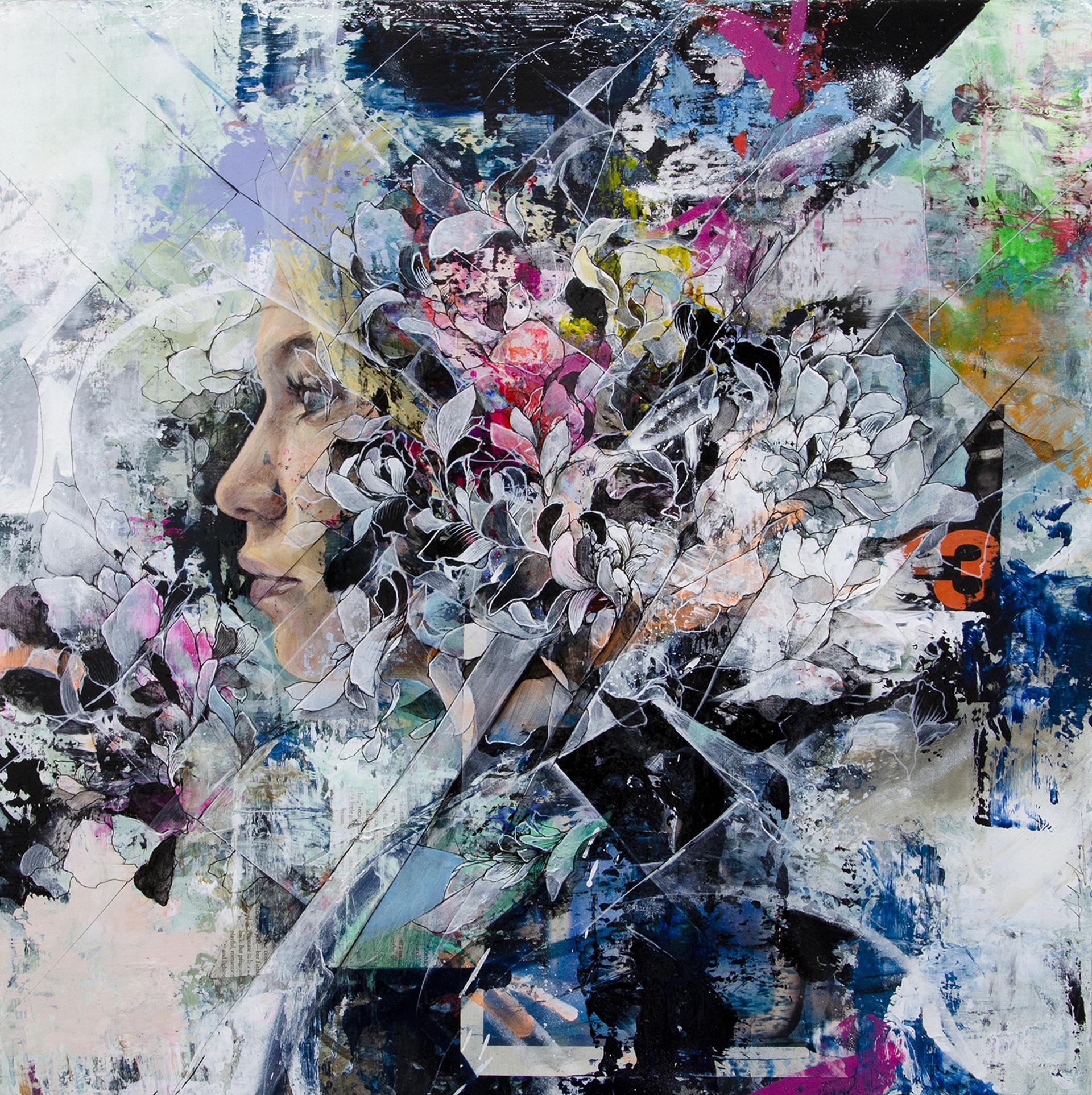 Bloom by Aiden Kringen