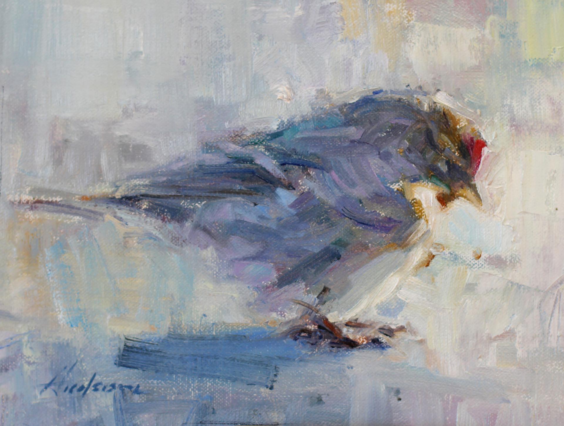 Redpoll by Carolyn Anderson