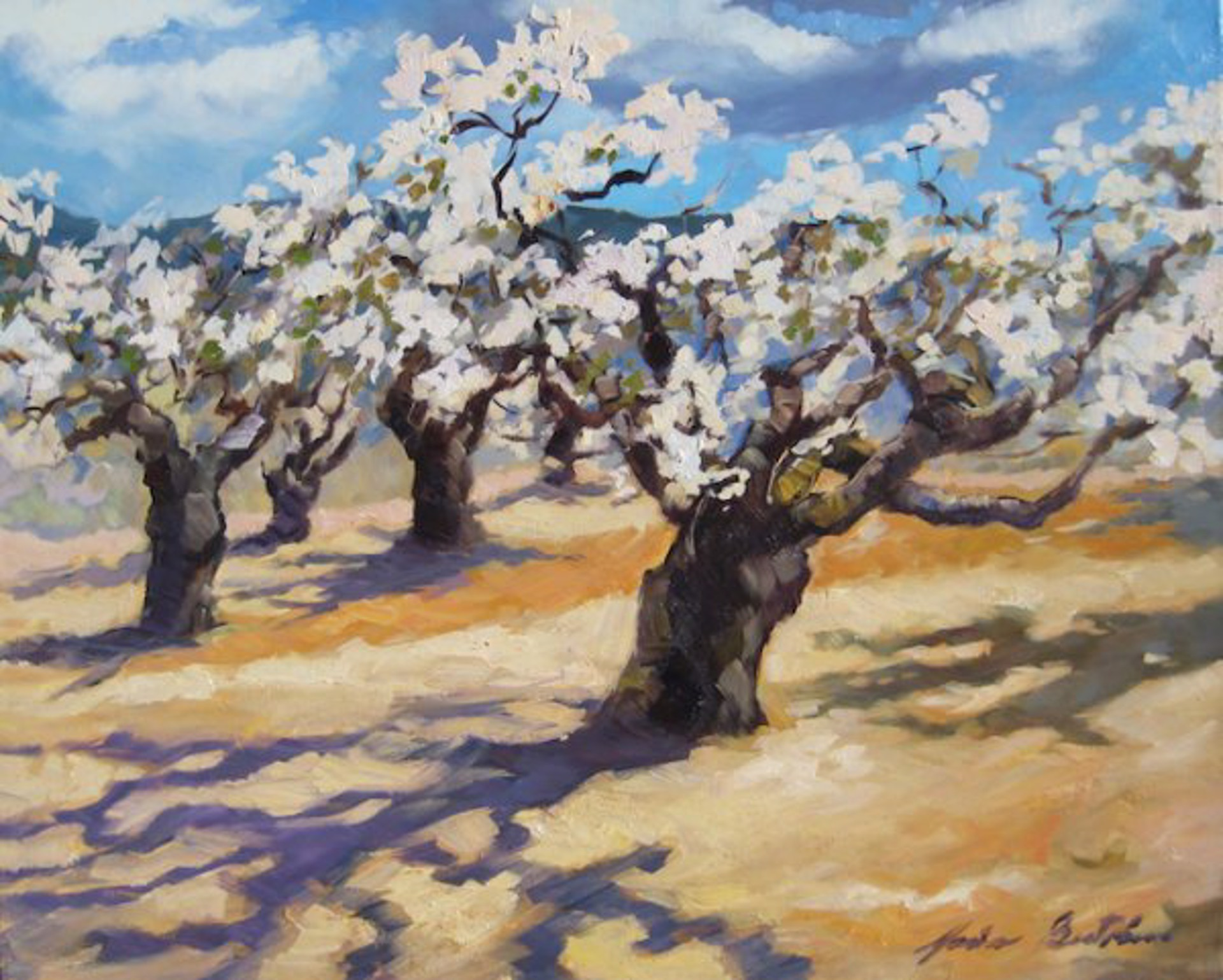 Bertran: Spring Cherry Blossoms, Provence by Maria Bertrán