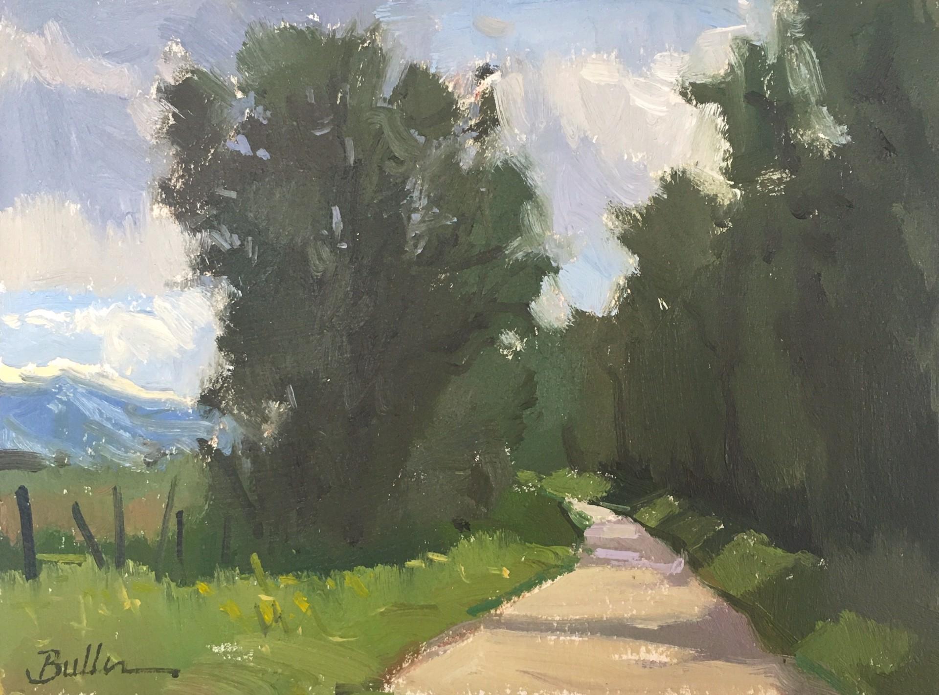 Idaho Road by Samantha Buller