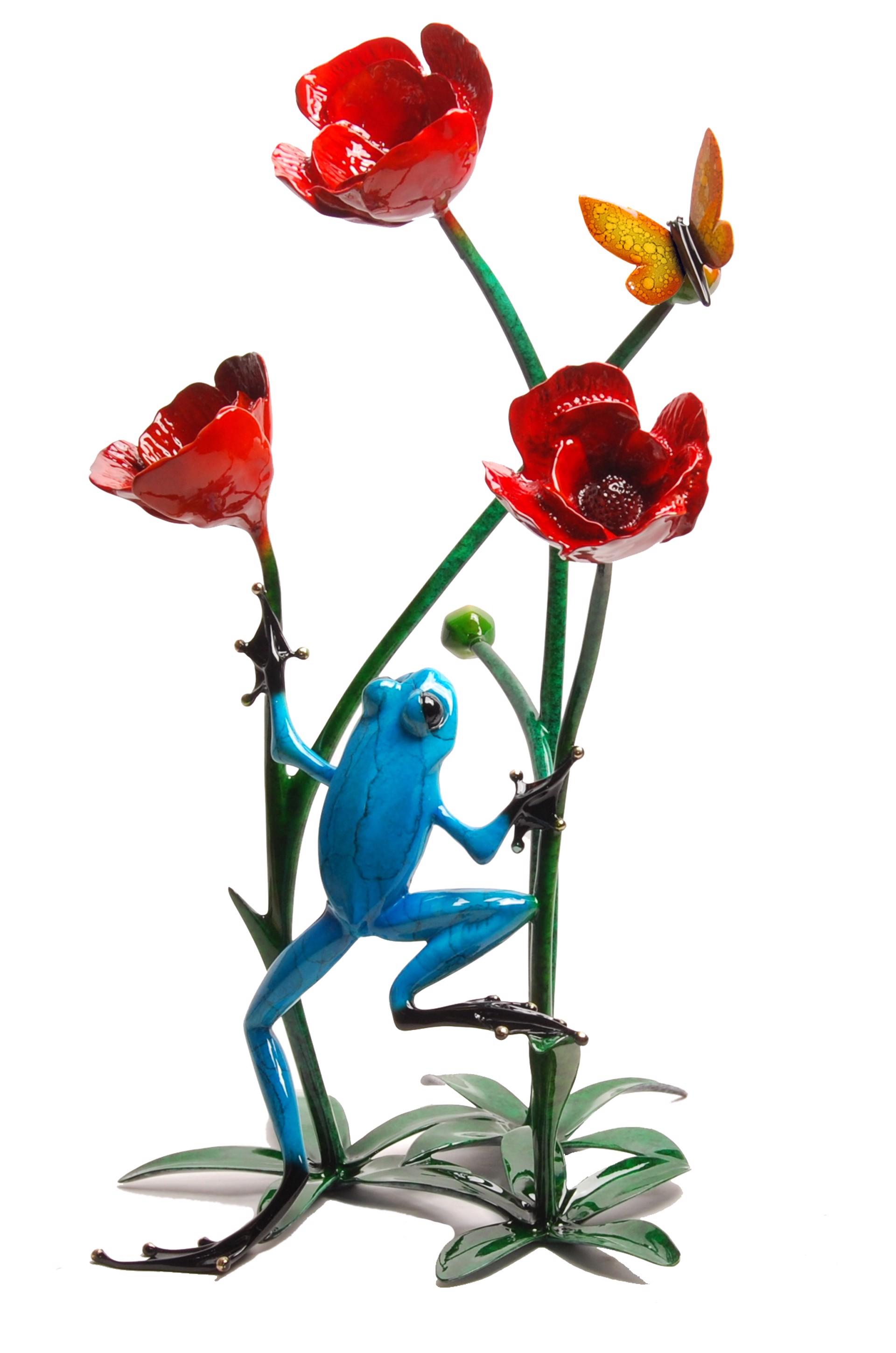 Poppy BF178 by Tim Cotterill
