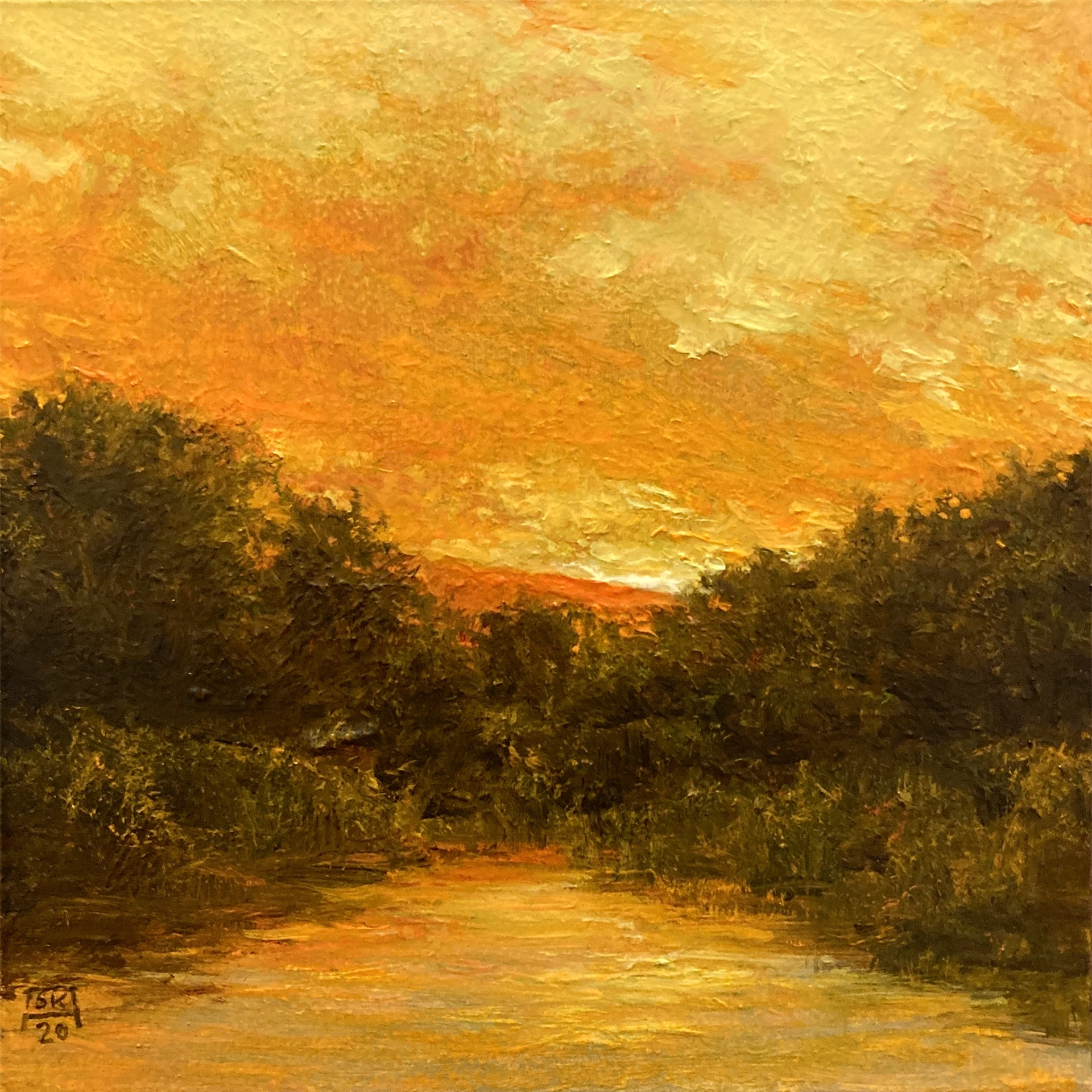 Summer Marsh by Shawn Krueger