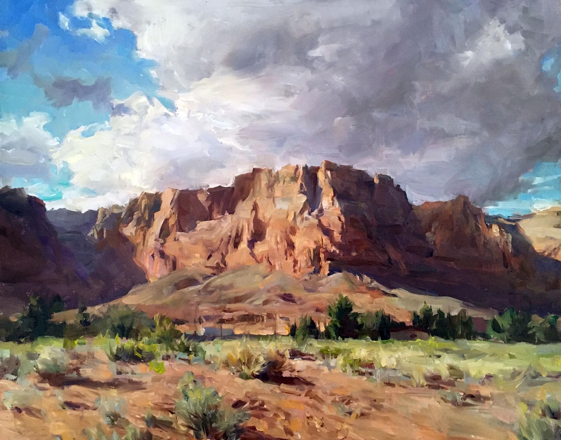 Vermillion Cliffs Evening by Kyle Ma