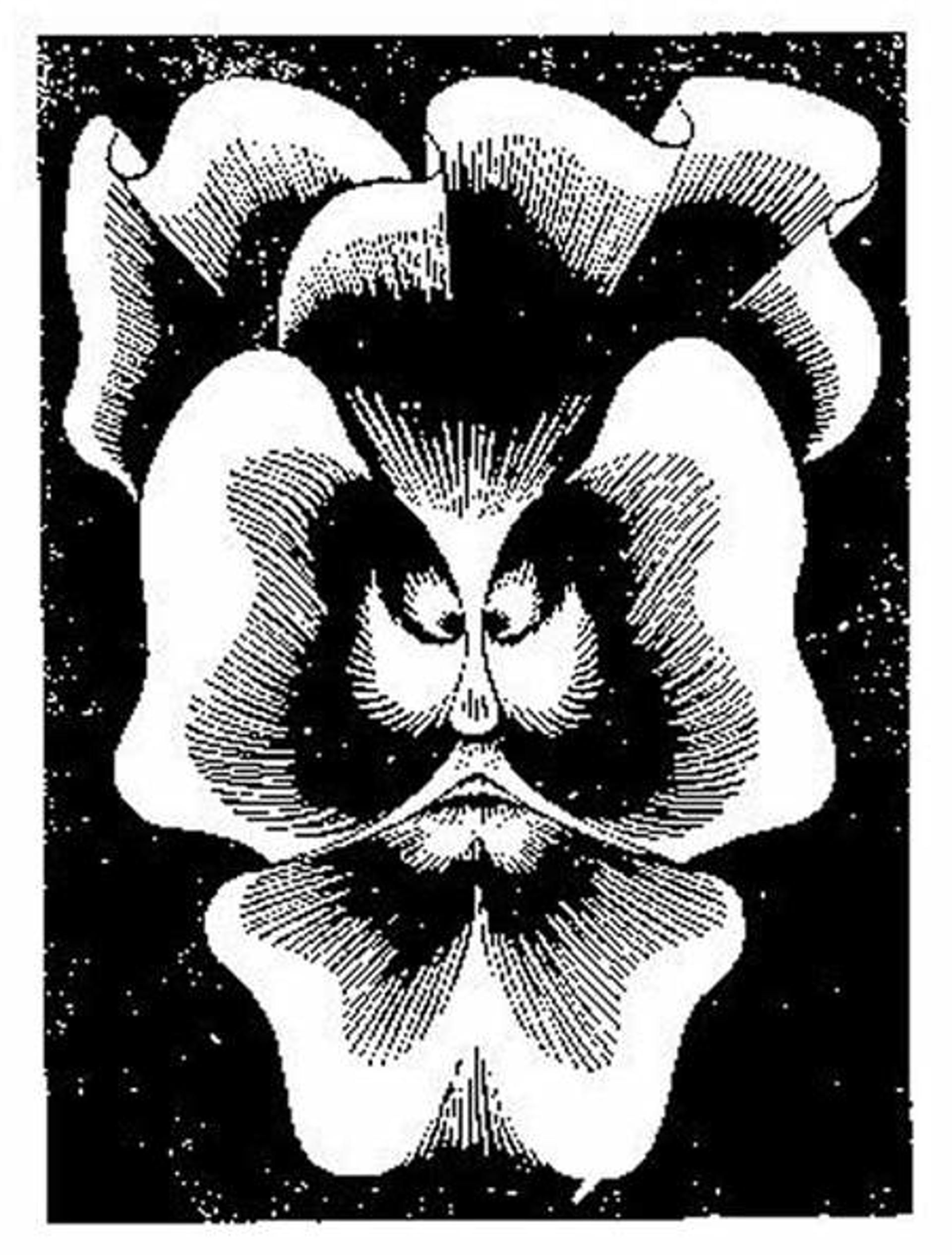 Flor de Pascua - La Pensee by M.C. Escher