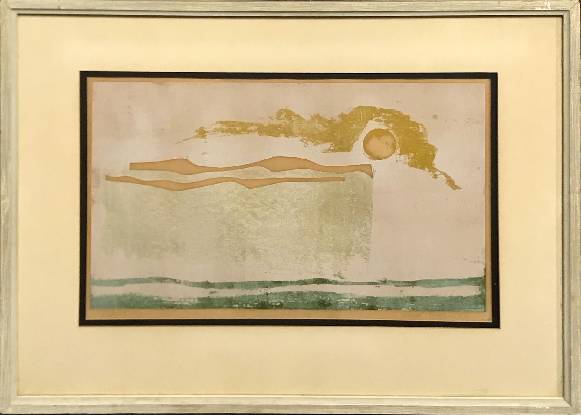 Whiteout by Henri Gadbois