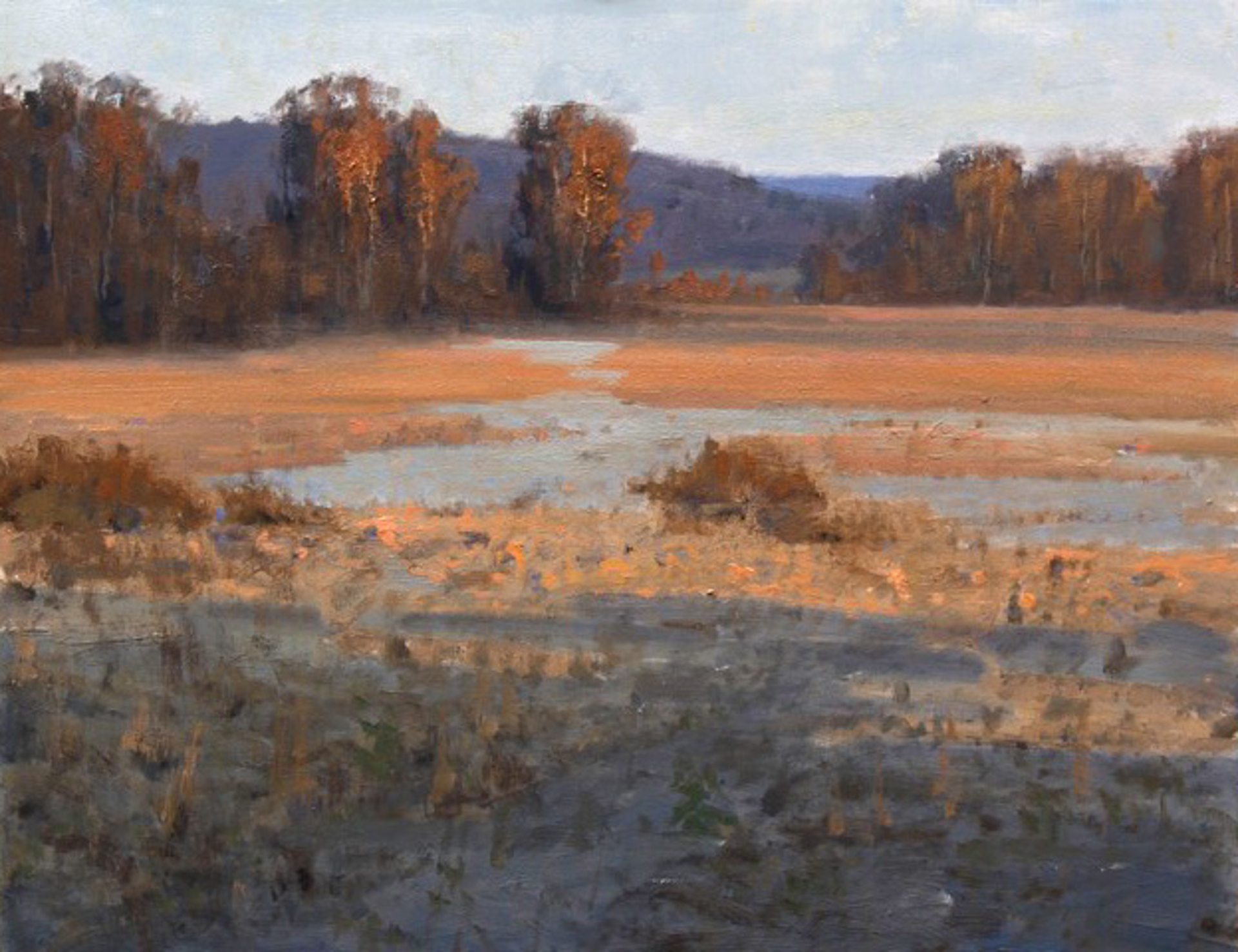 Sunset Field by Roger Dale Brown