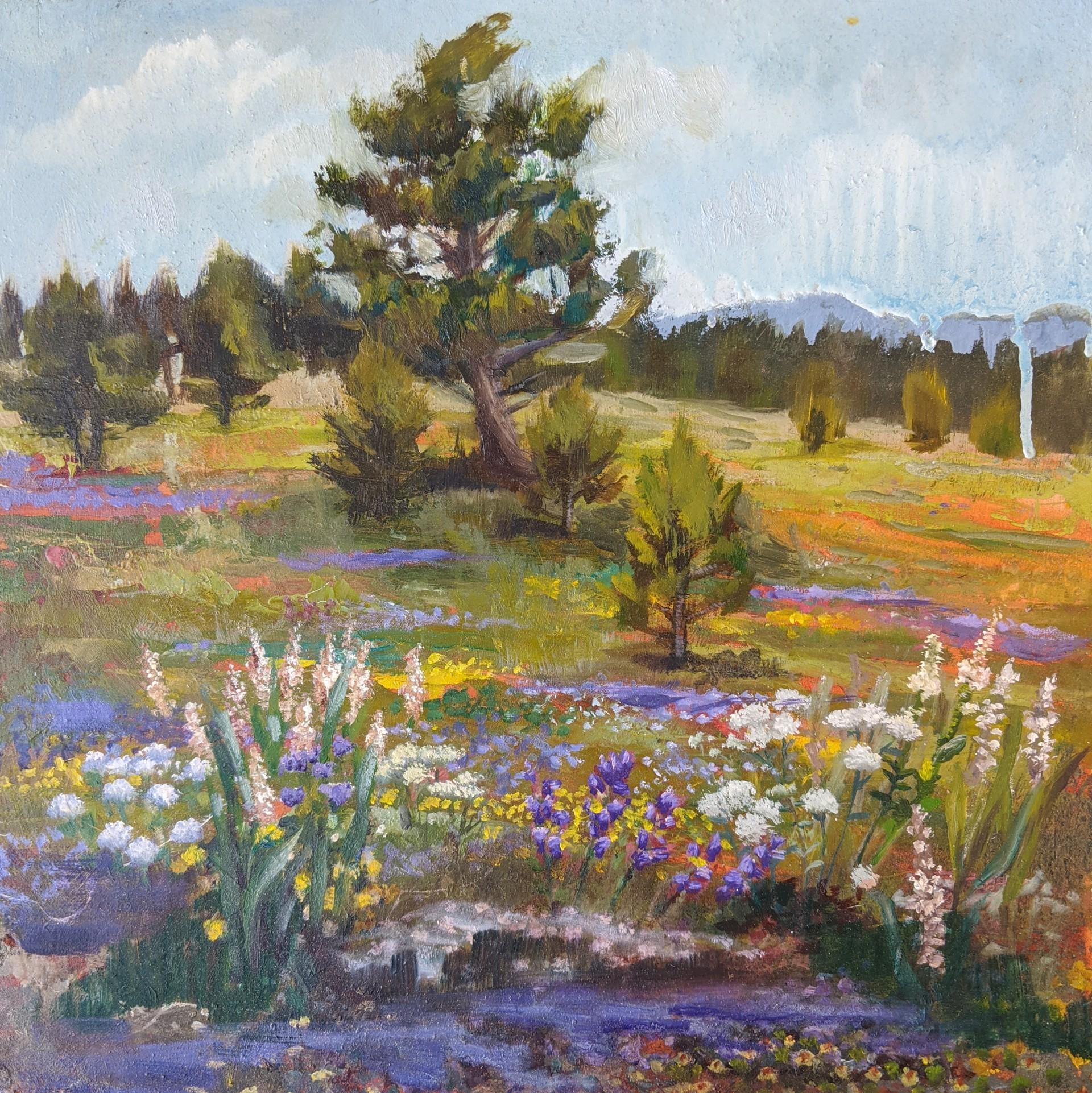 Landscape II by Caitlin Hurd