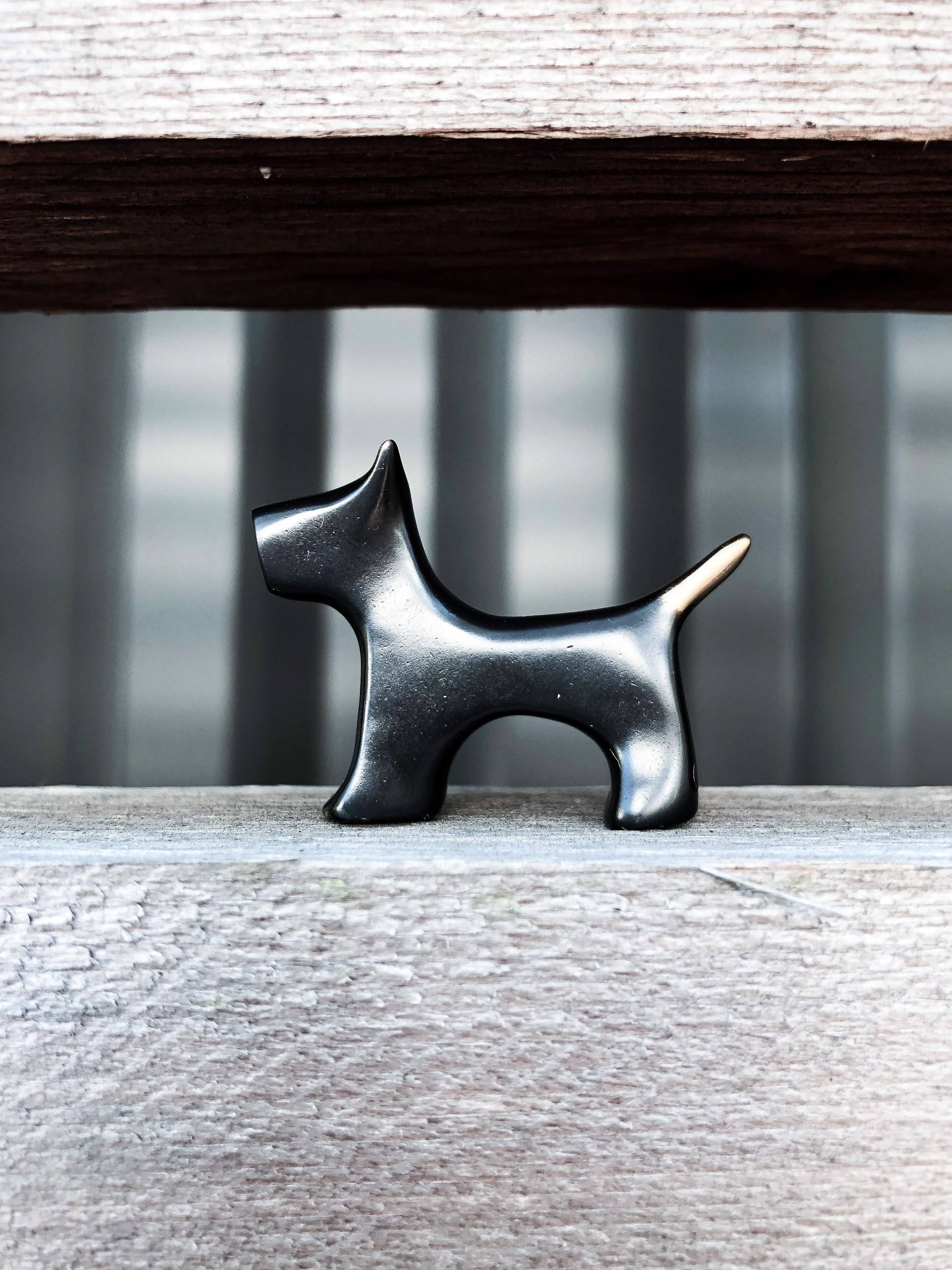 Small Dog by Yenny Cocq