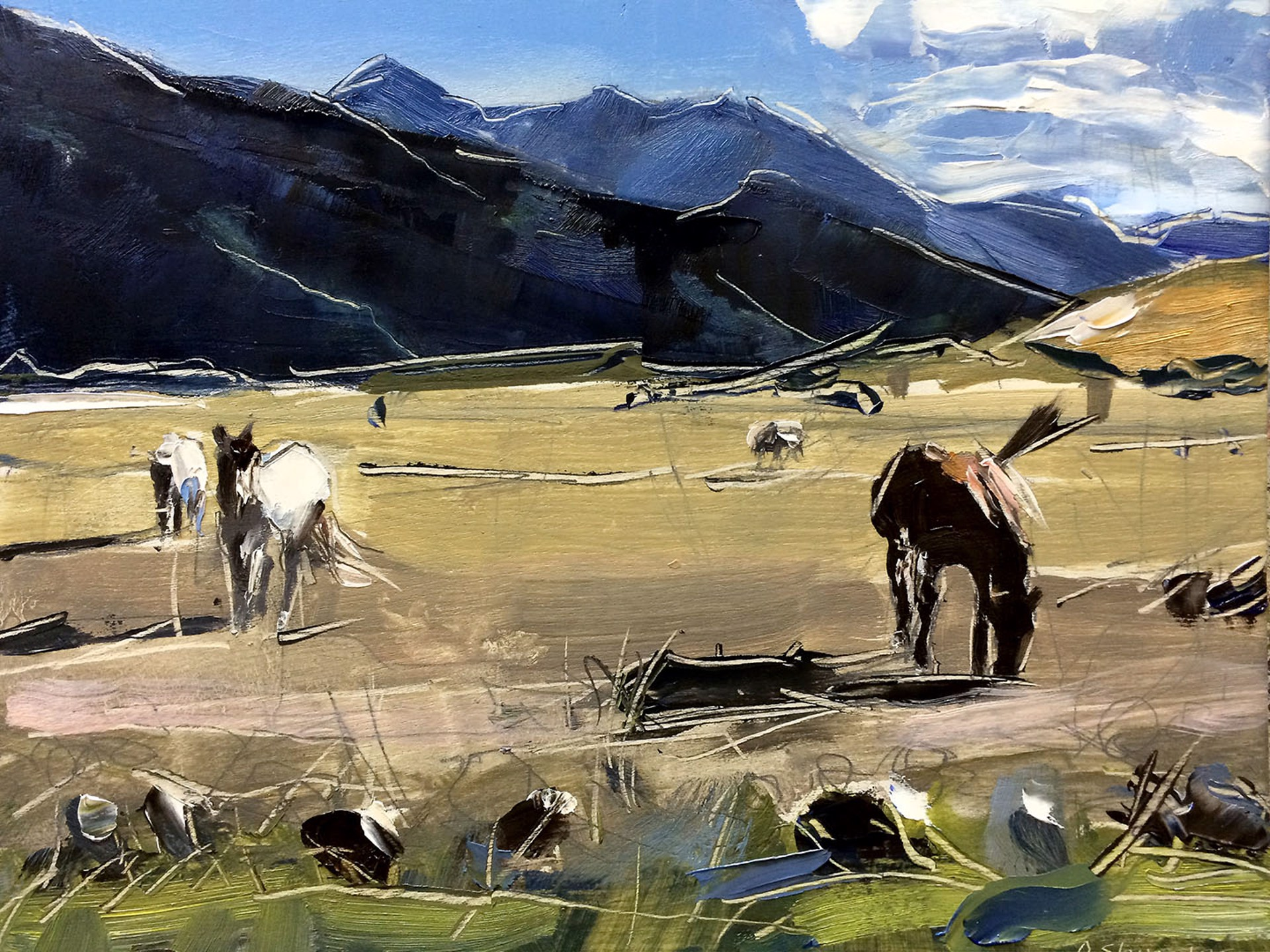 Horses in Montana by David Shingler