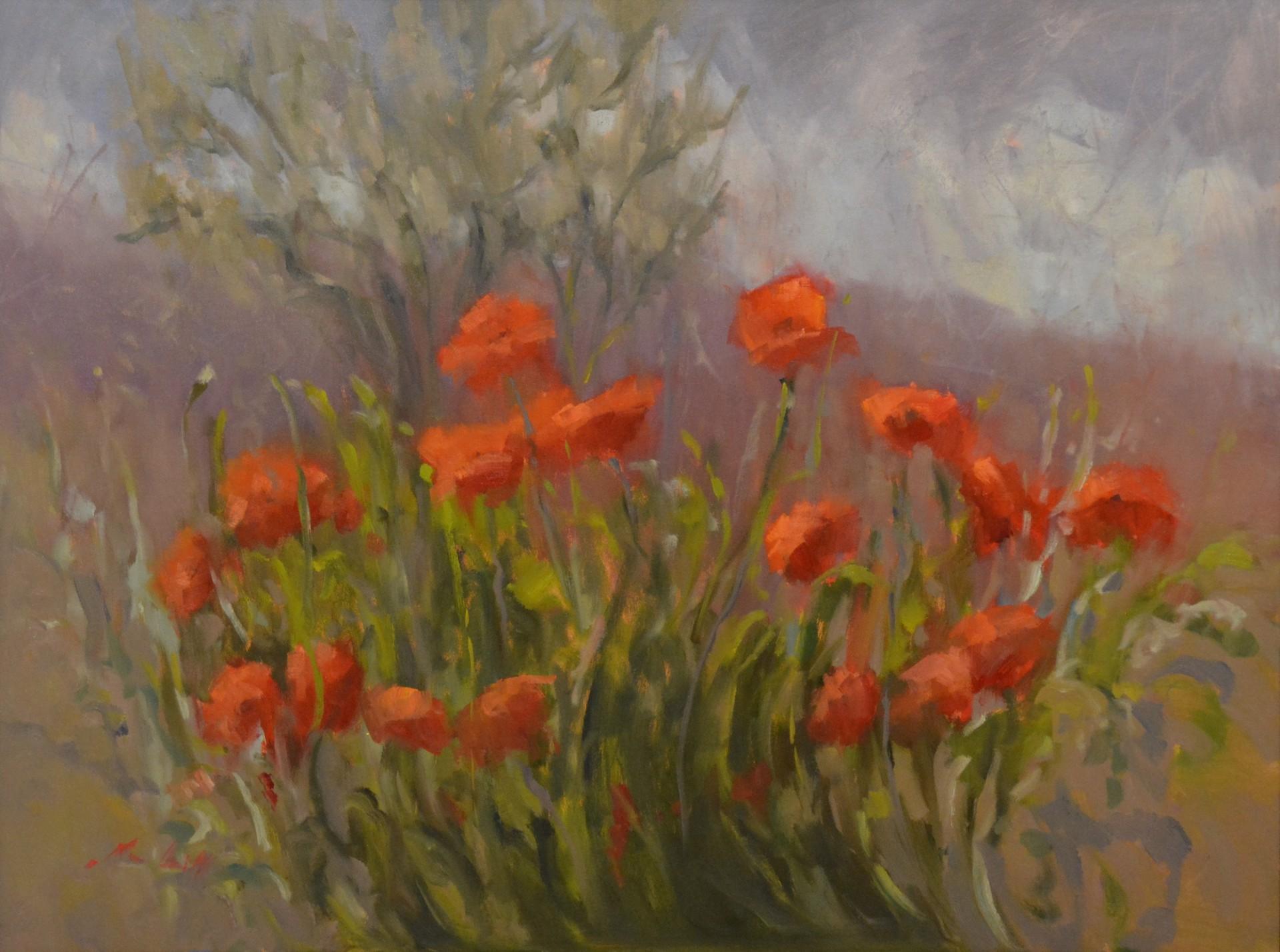 Wild Poppies of Umbria by Karen Hewitt Hagan