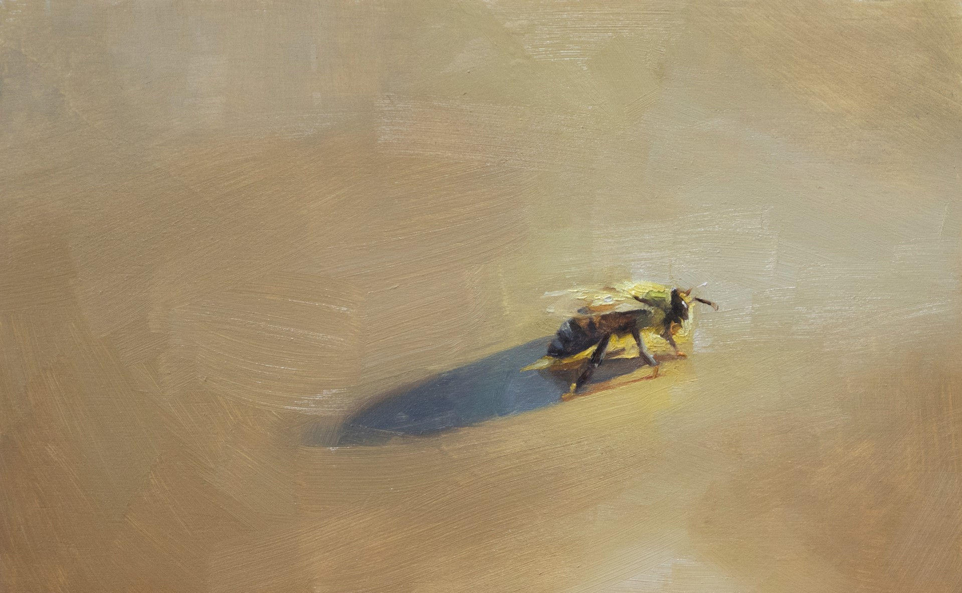 Golden Bee by Robin Cole