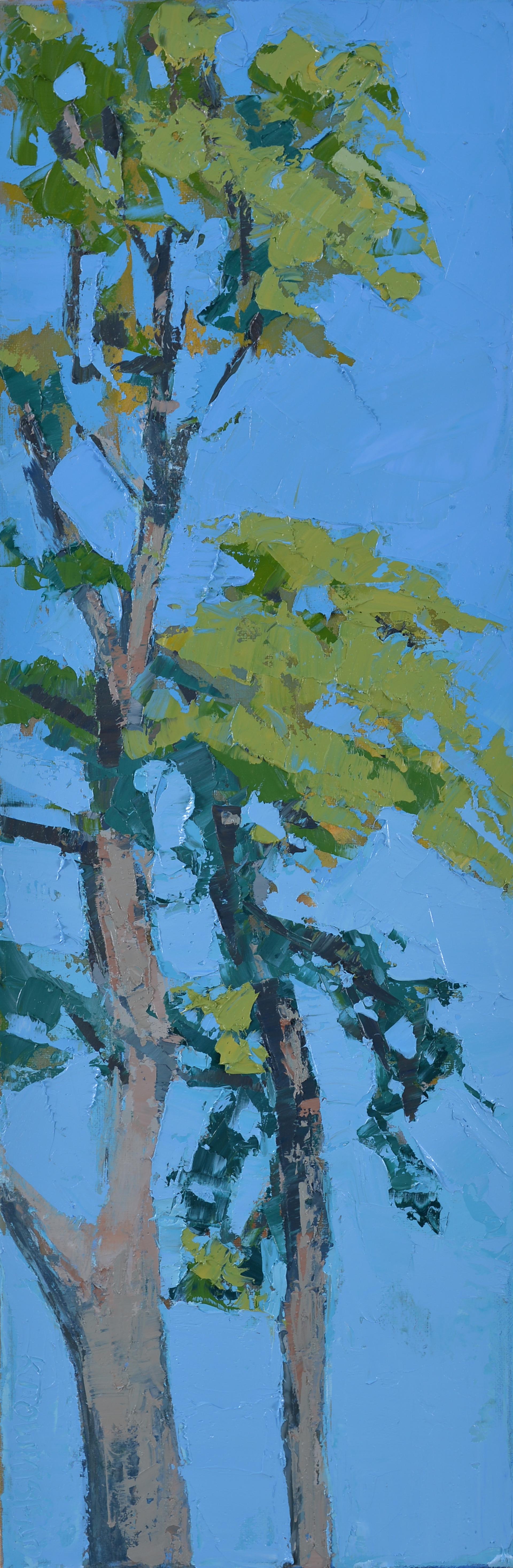 Cedars in the Wind by Krista Townsend