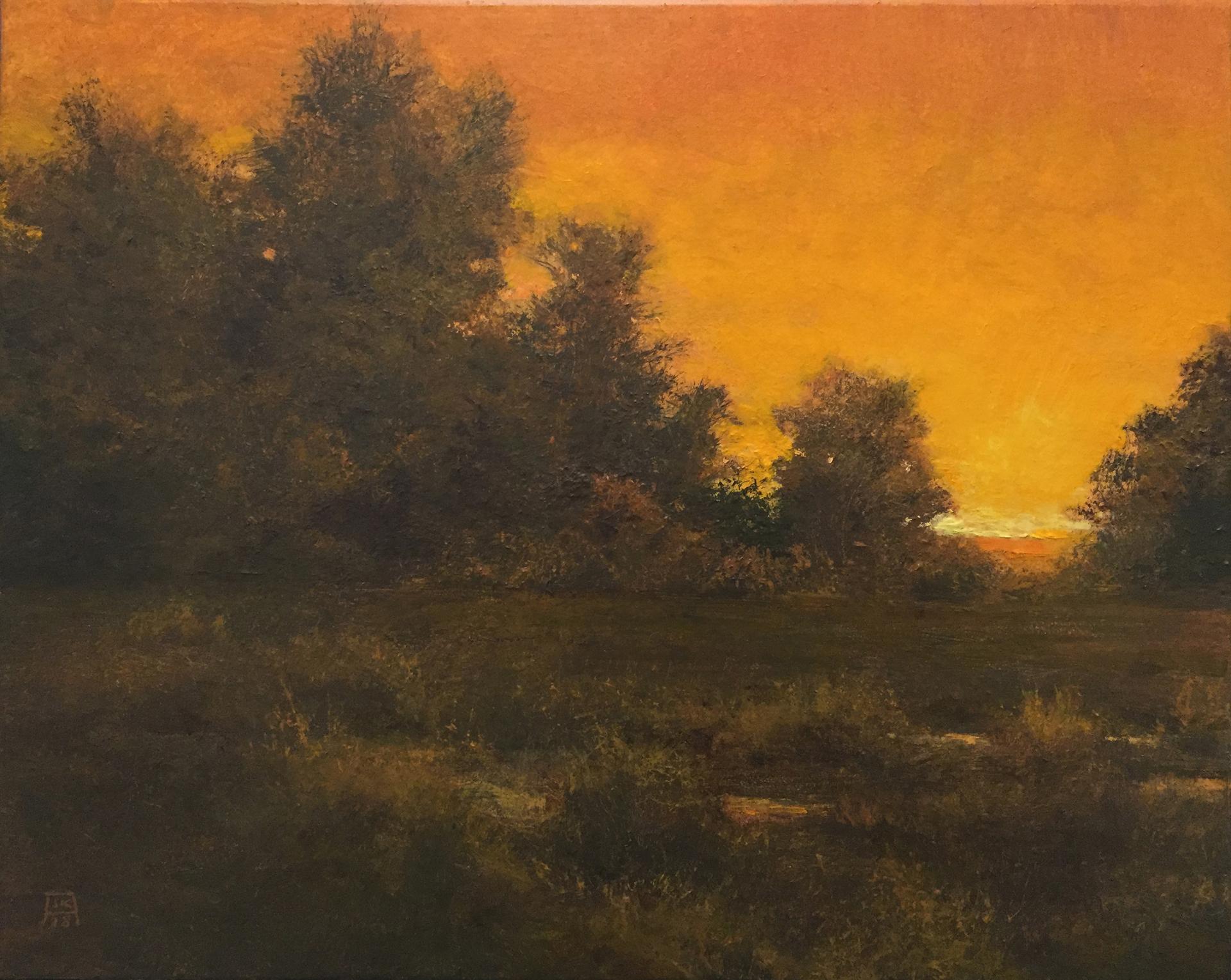 Black Marsh (Sanctus) by Shawn Krueger