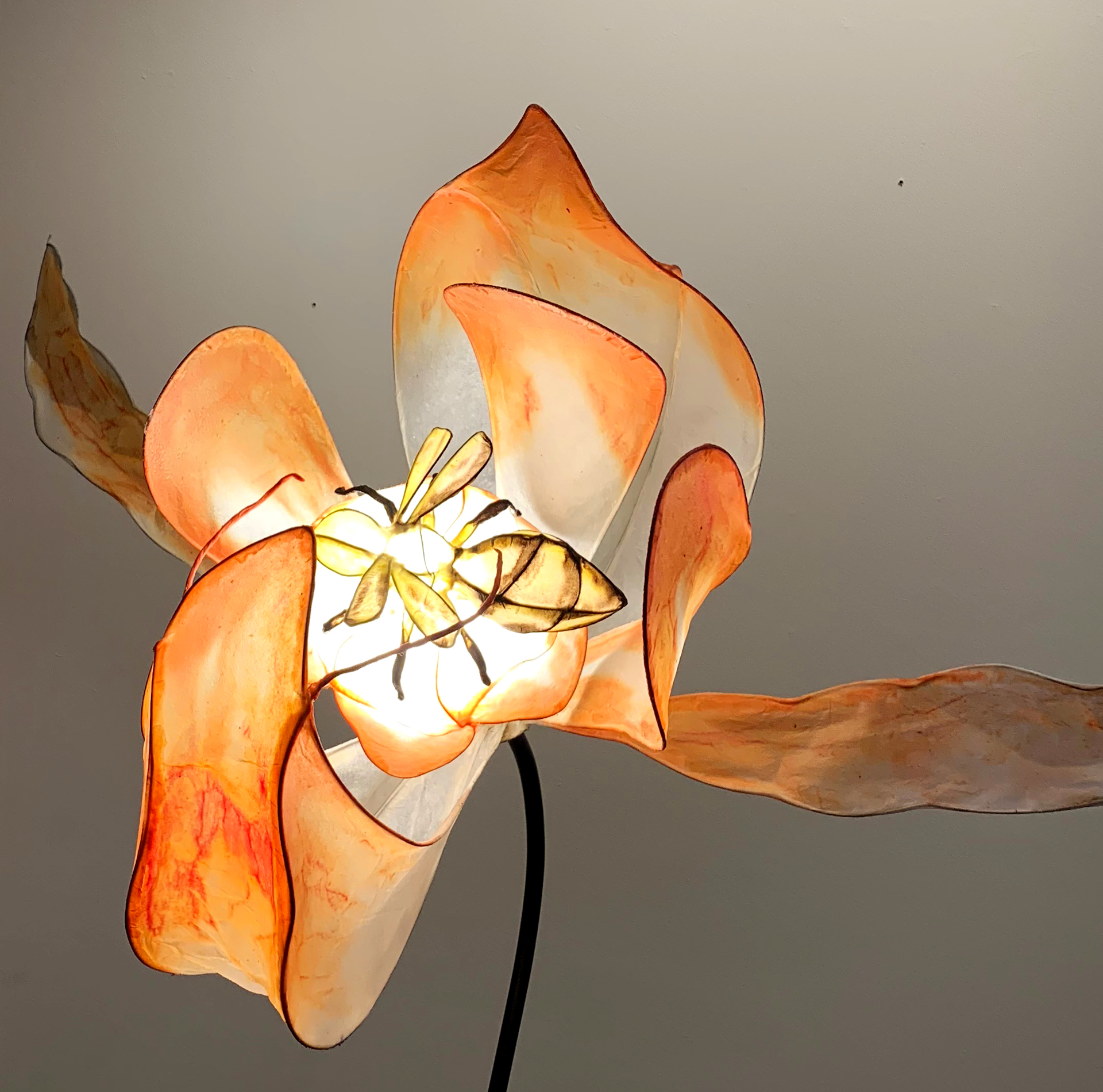 Bee + Pea Blossom / PBJ by HiiH Lights