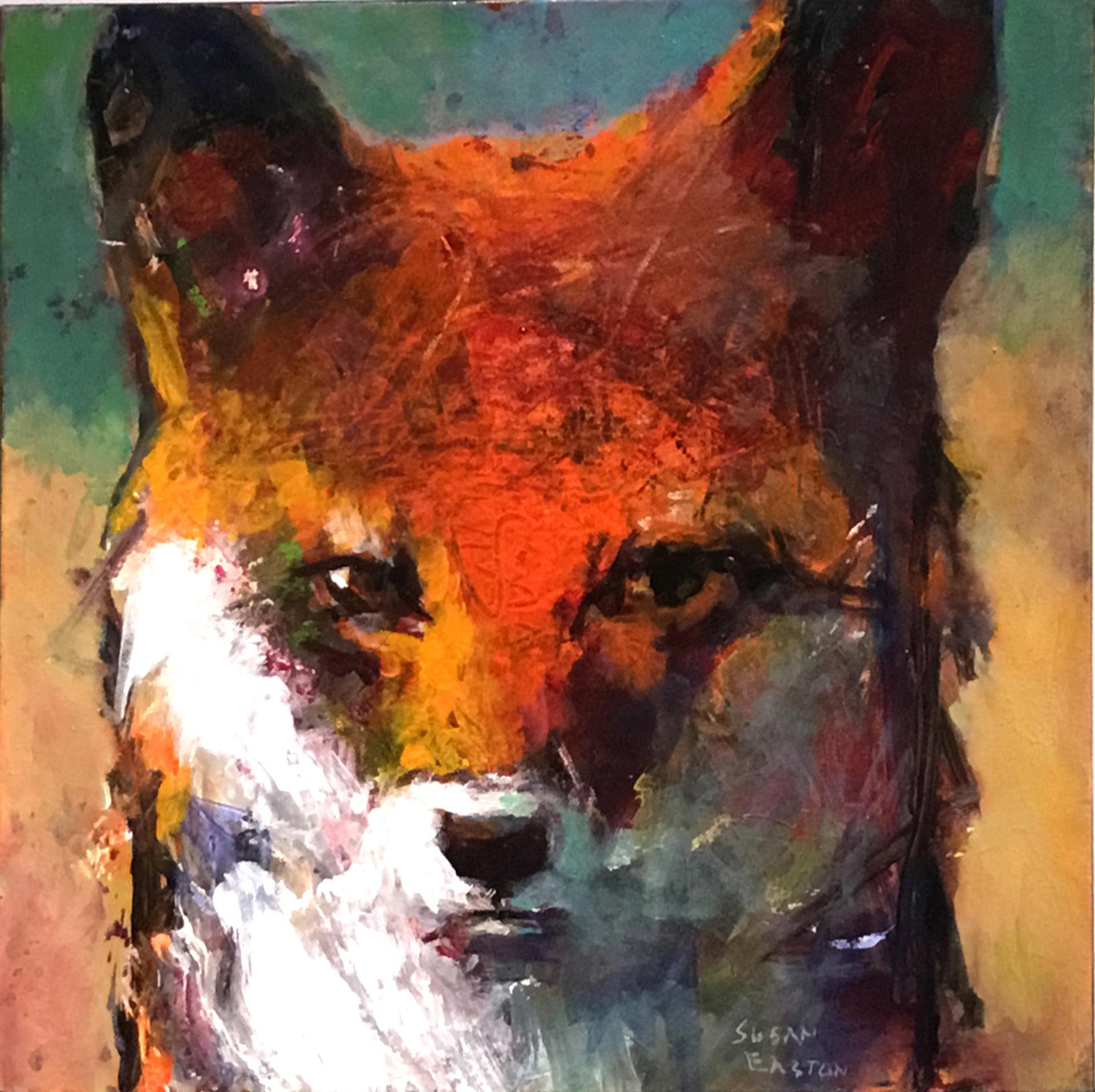 No Self Pity by Susan Easton Burns
