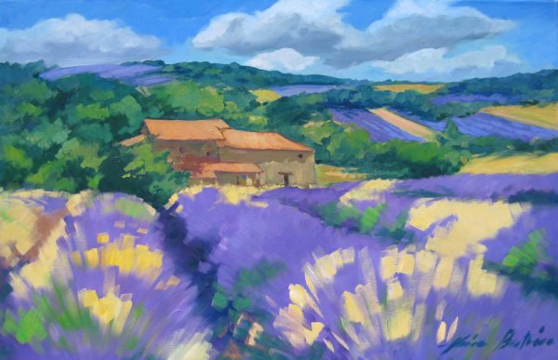 Bertran: Sloping Lavender Fields by Maria Bertrán