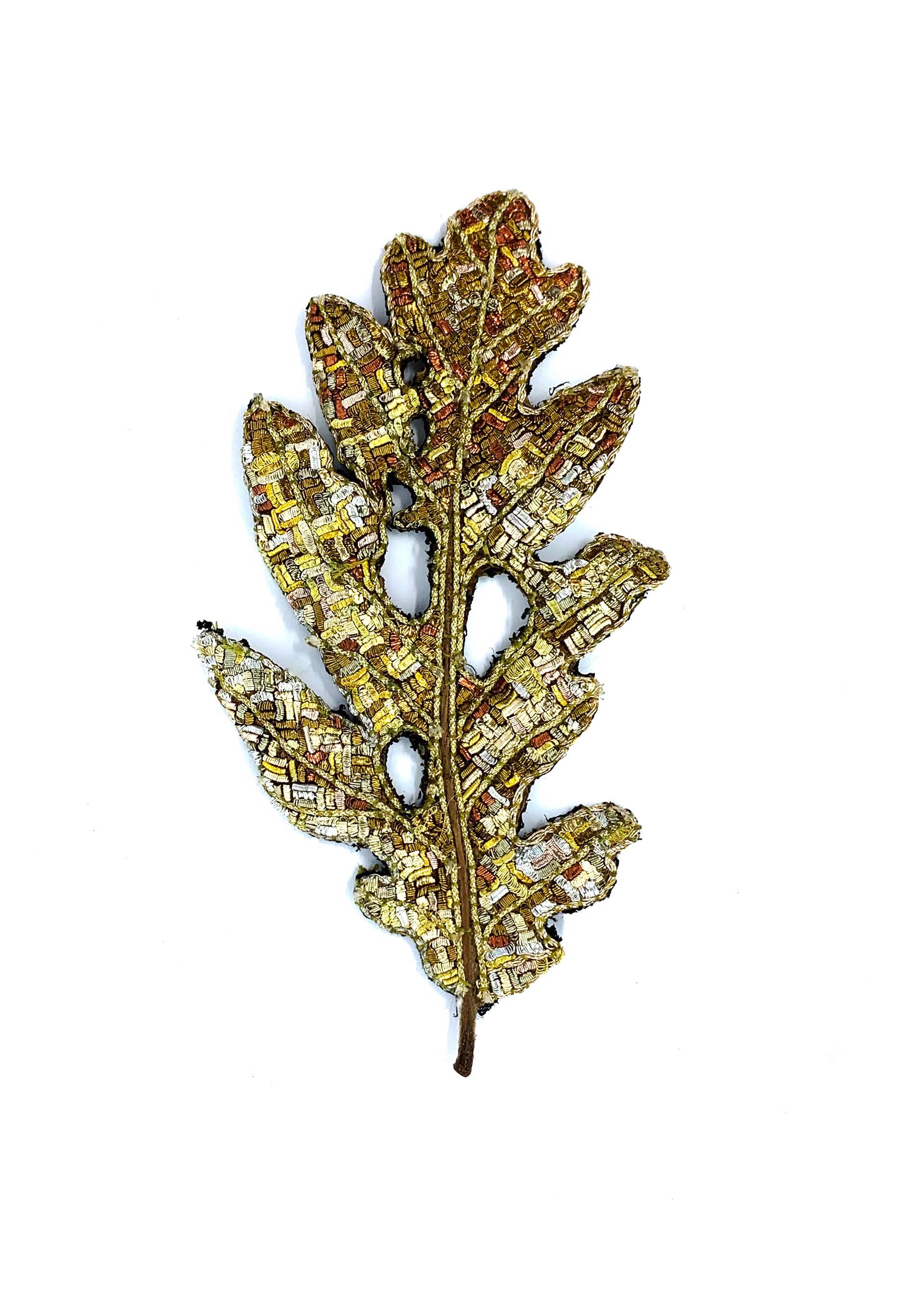The Impermanence of Life: Oak Leaf V by Tiao Nithakhong Somsanith