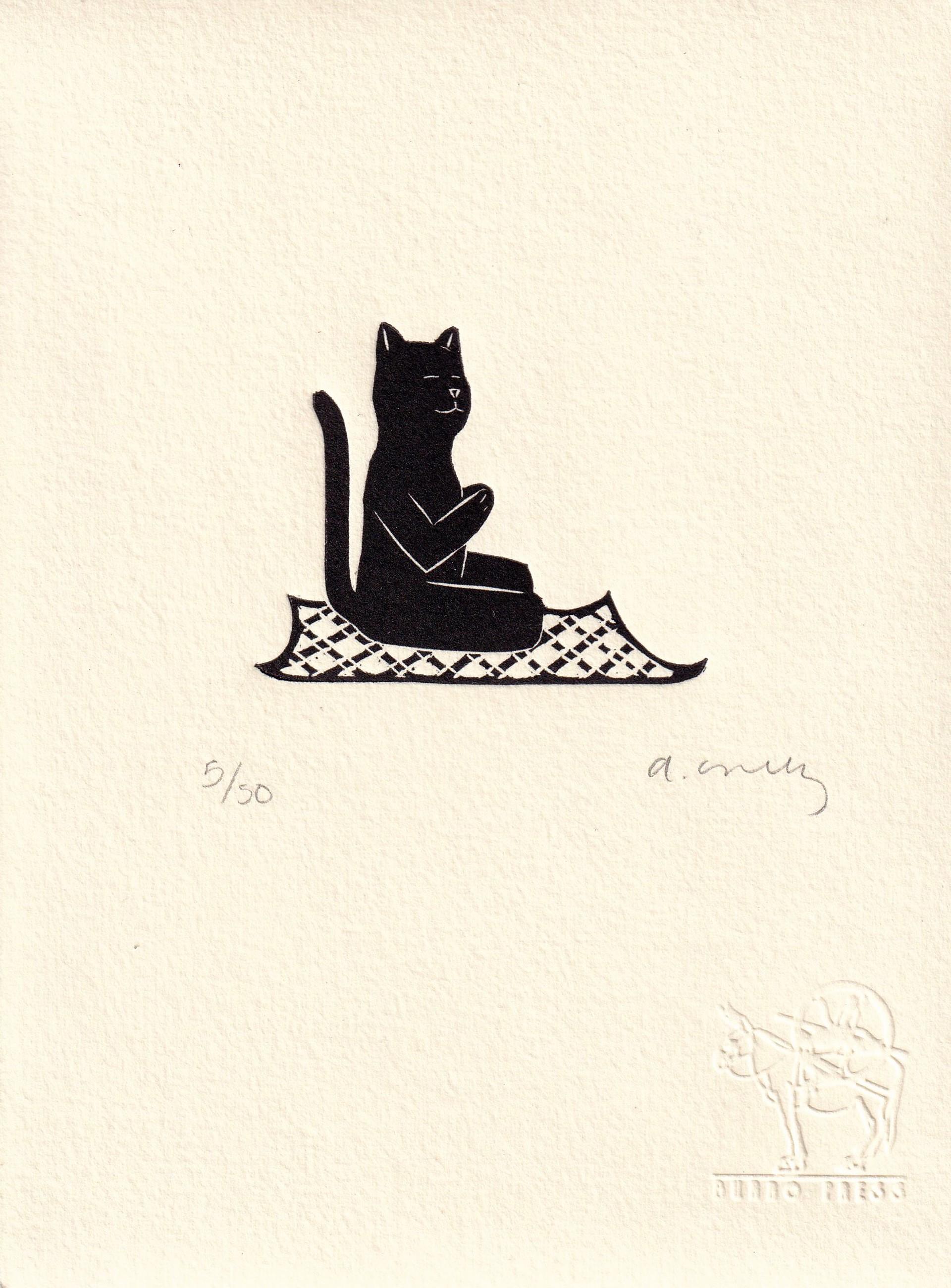 Untitled (Gato Yoga) by Alberto Cruz