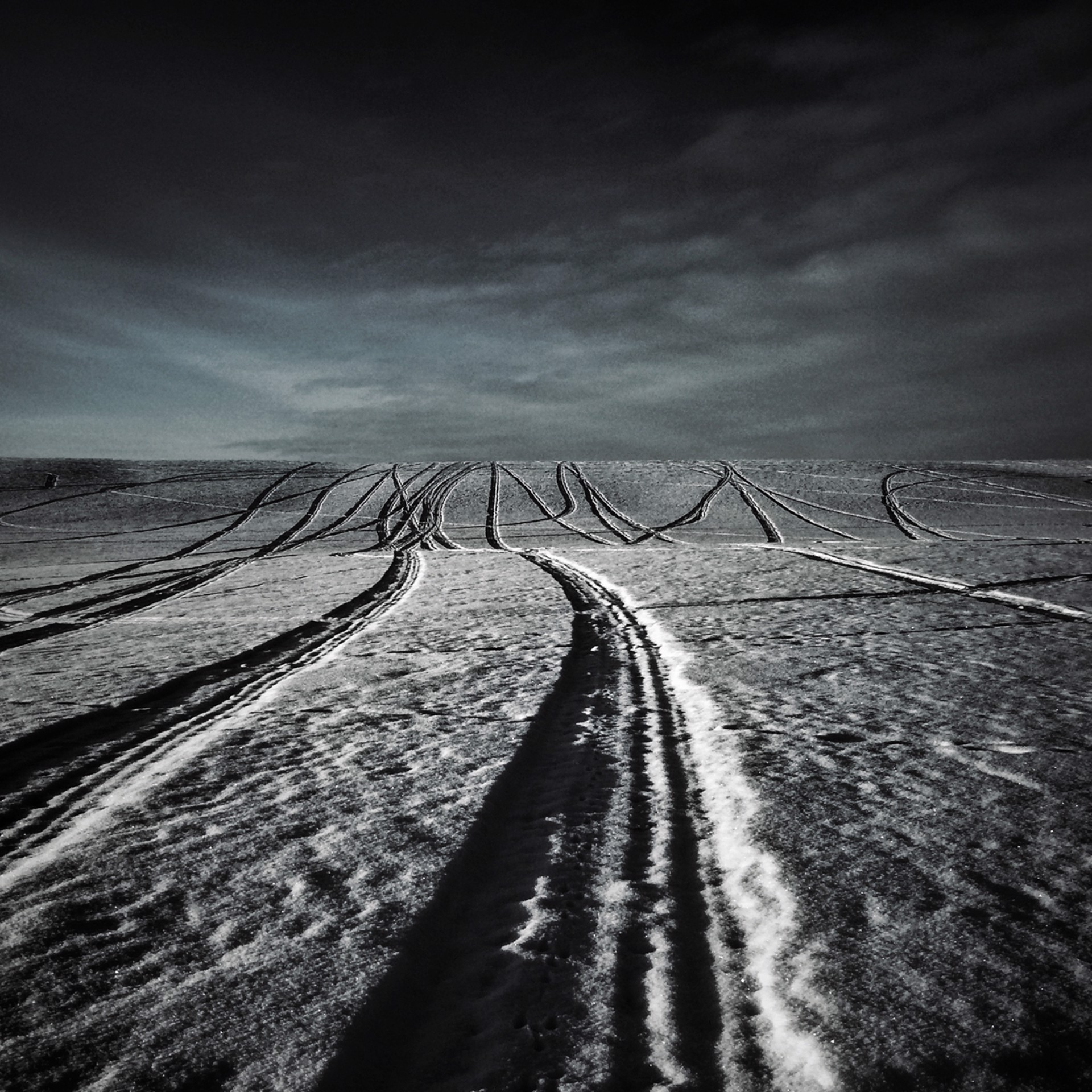 Track Marks by Allan Bailey