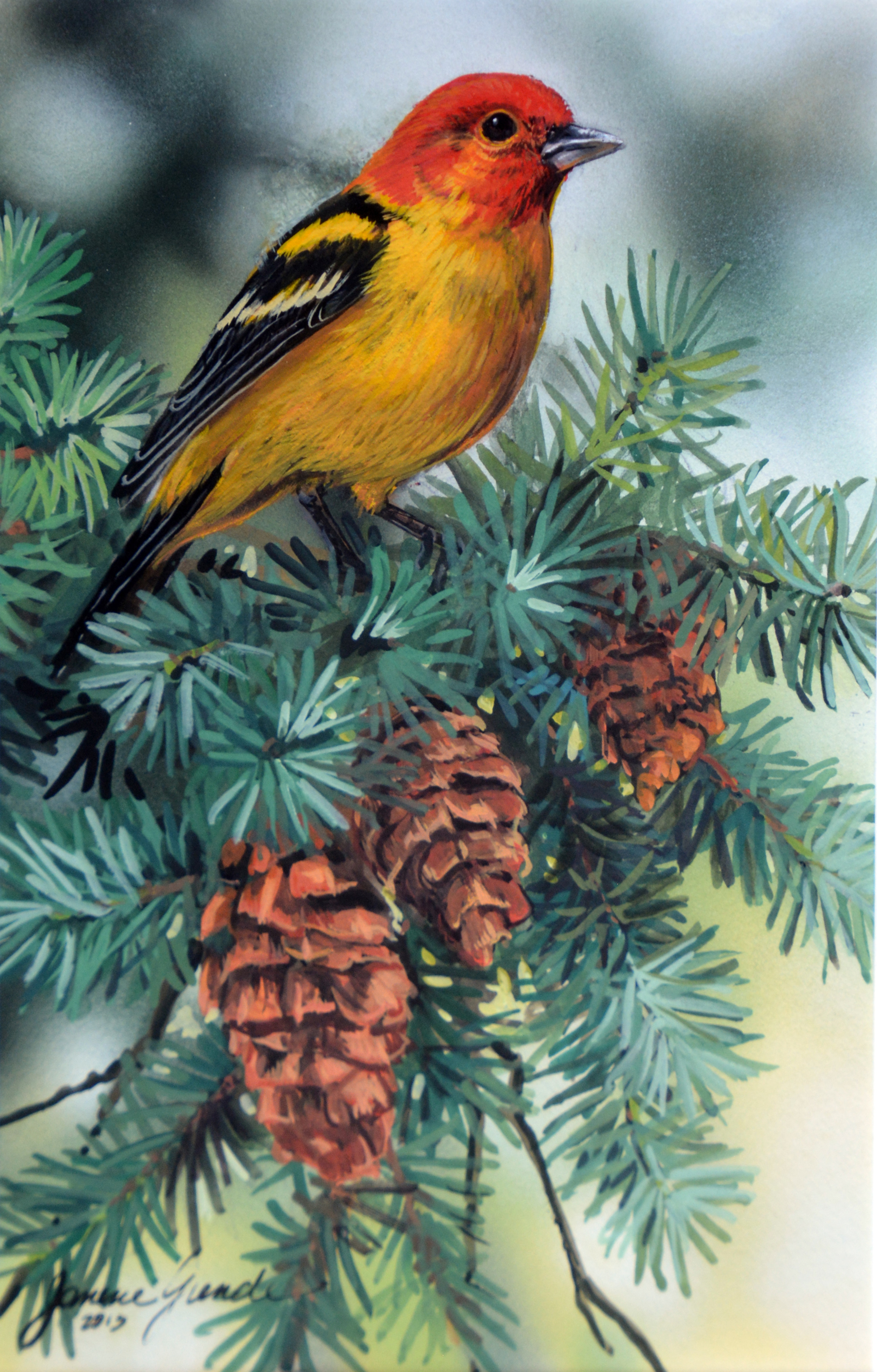 Forest Gem (Western Tanager) by Janene Grende