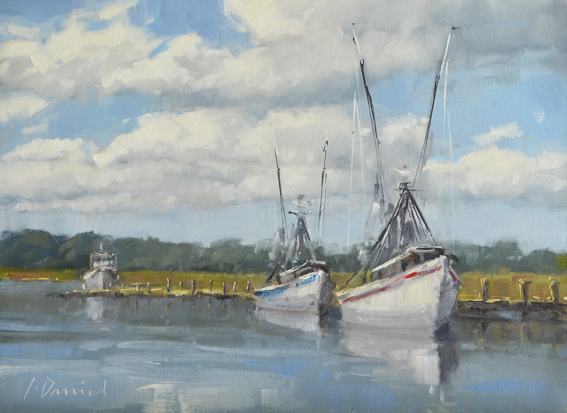 Dockside Line Up by LAUREL DANIEL