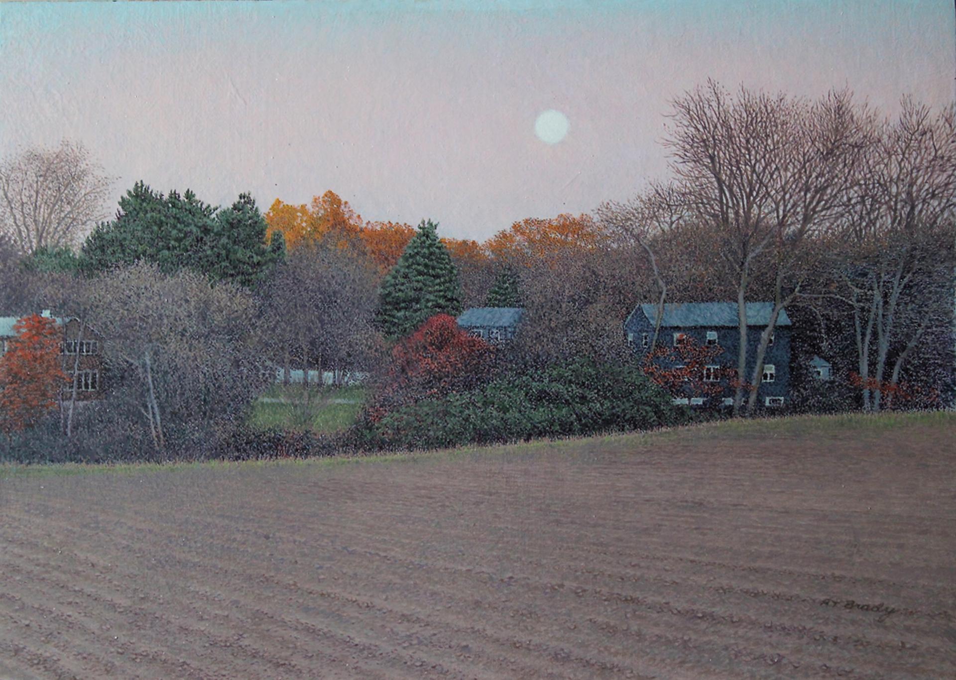 Tilling the Land by Richard T Brady