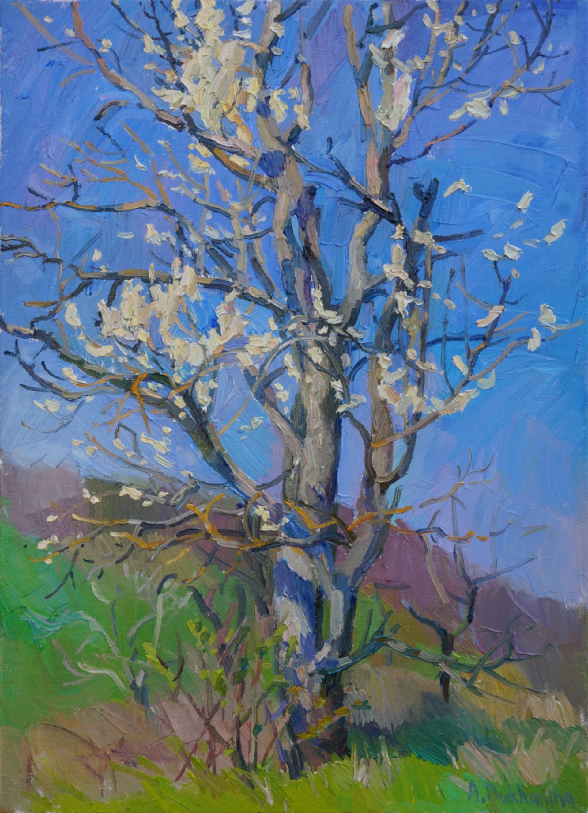 Blooming Tree by Anastasia Dukhanina
