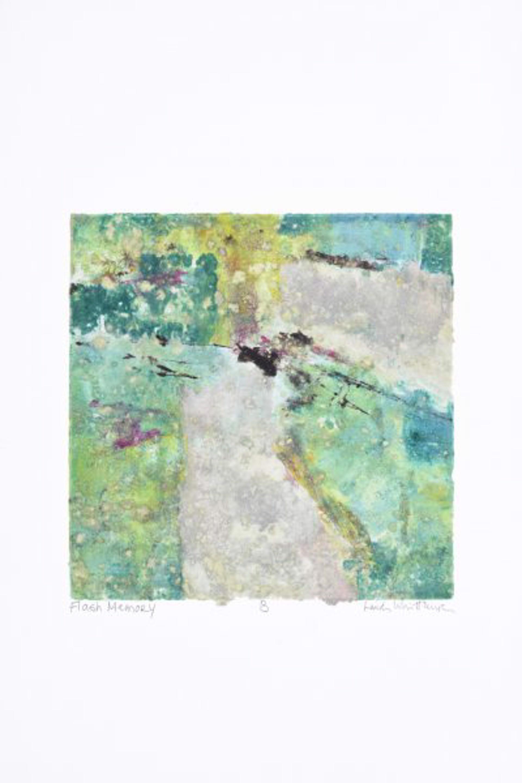 Flash Memory B by Linda Whittemore