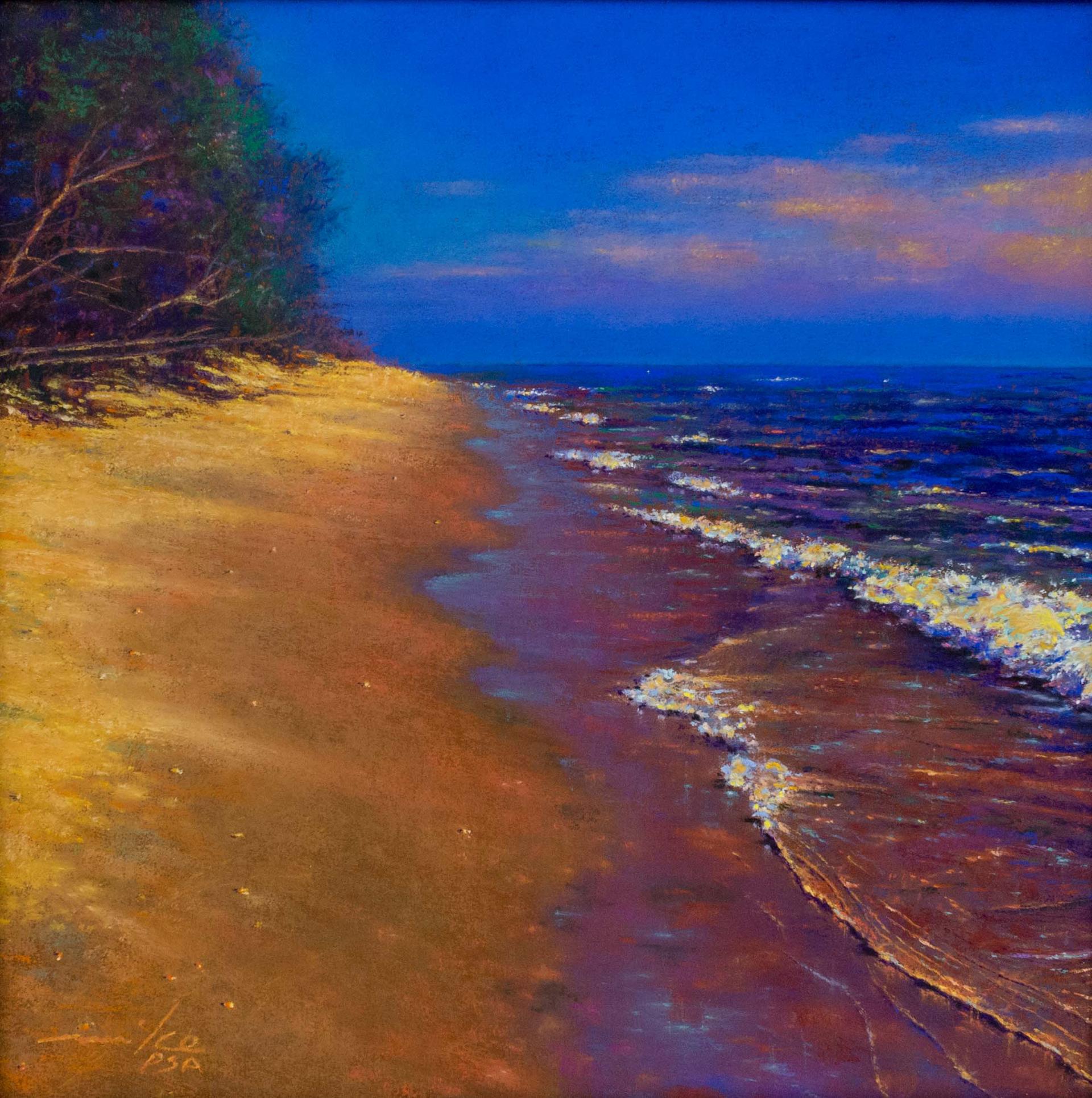 Sun On A Beach by Mike Barret Kolasinski