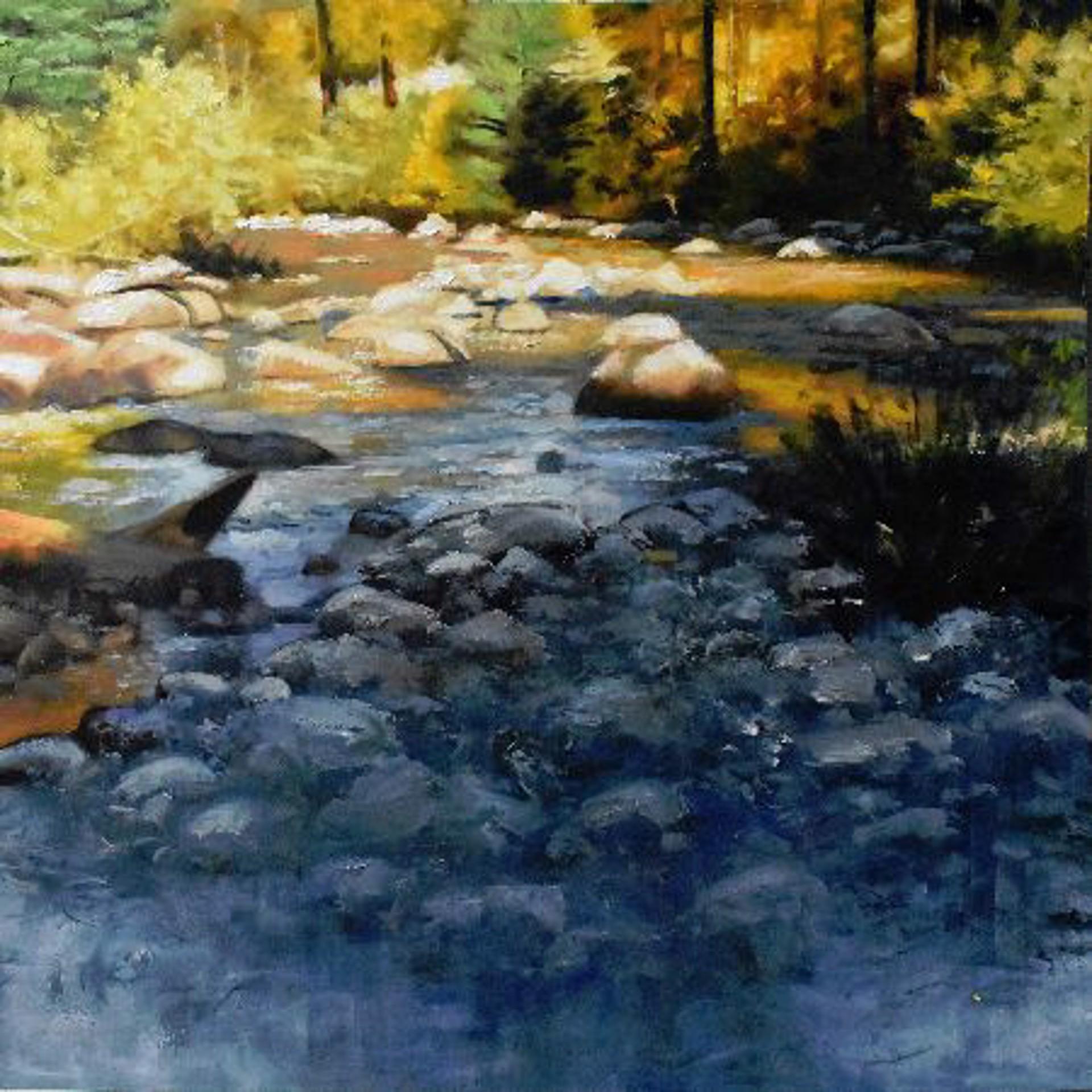 castle creek study #2 by Steven Walker