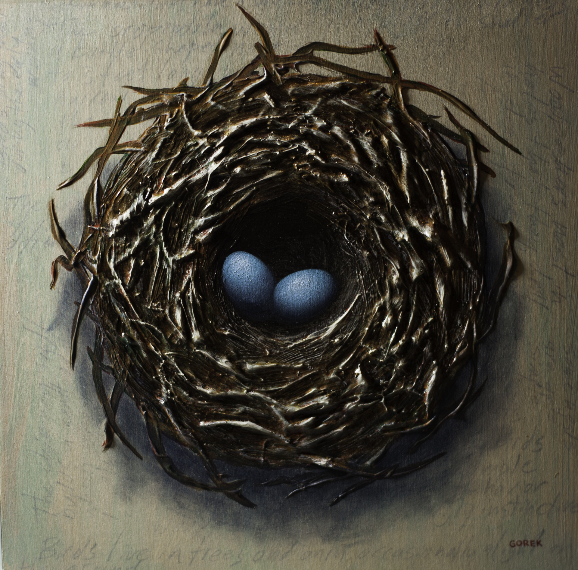 Bird's Nest, Two Eggs by Thane Gorek